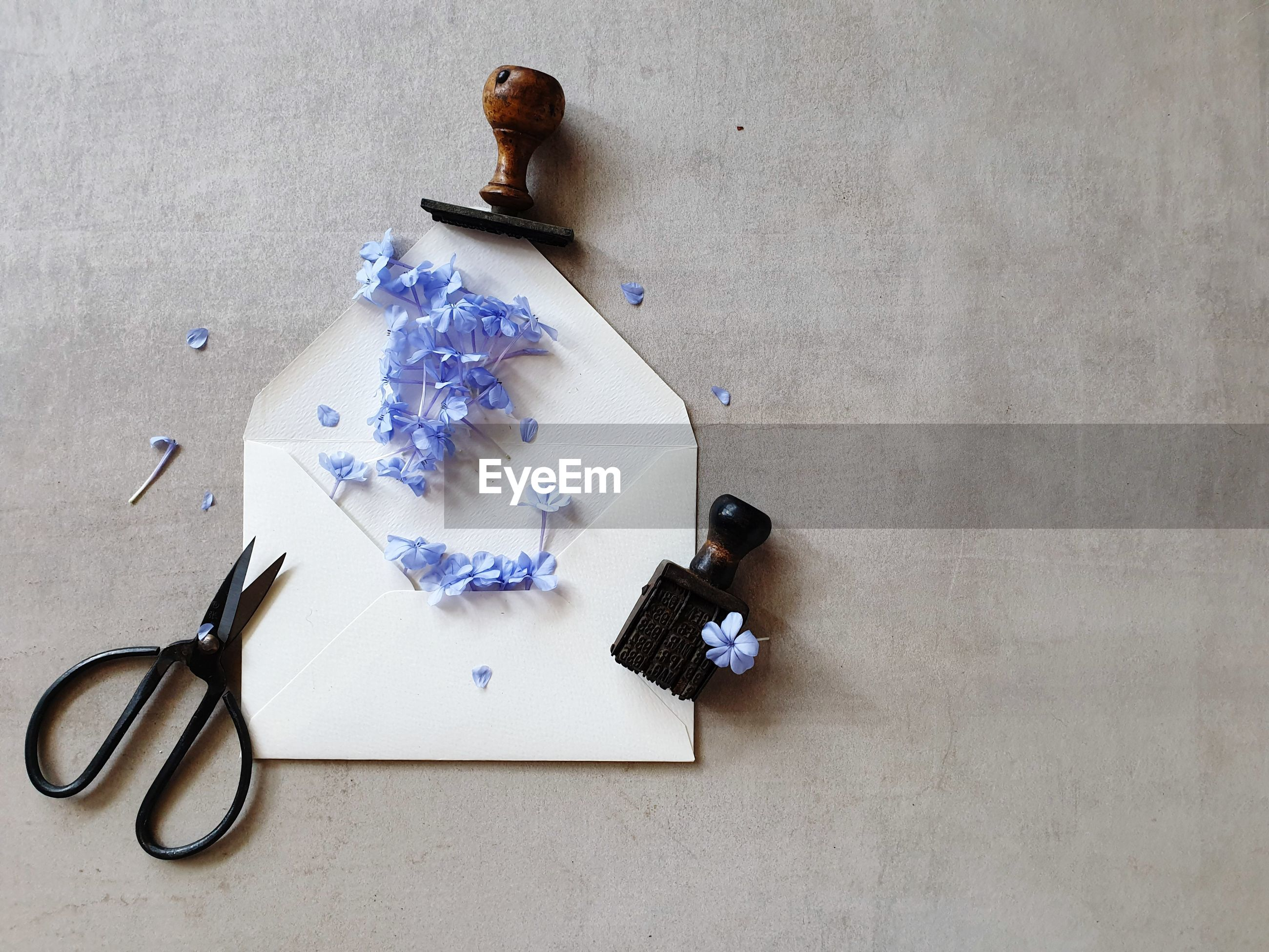High angle view of flowers over envelope on table