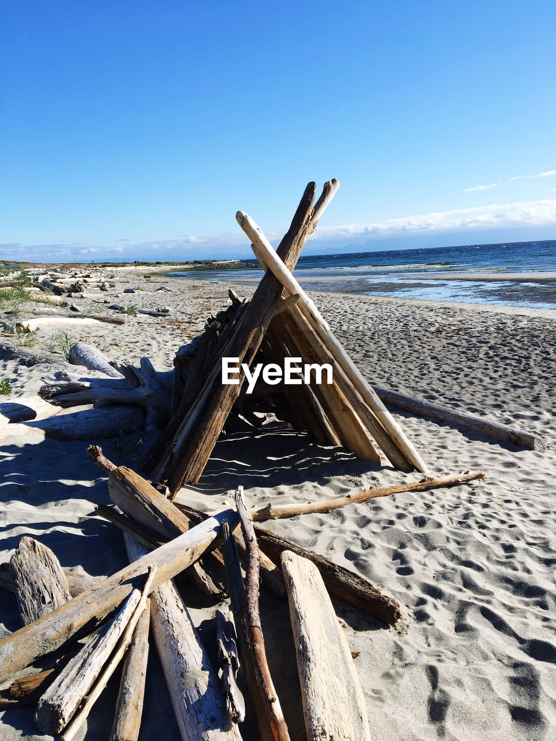 SCENIC VIEW OF DRIFTWOOD ON BEACH