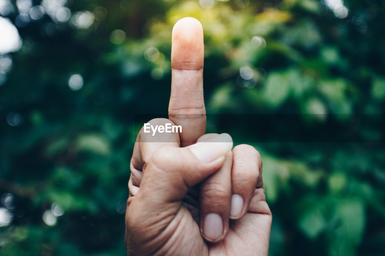 Close-up of human hand showing obscene gesture against trees