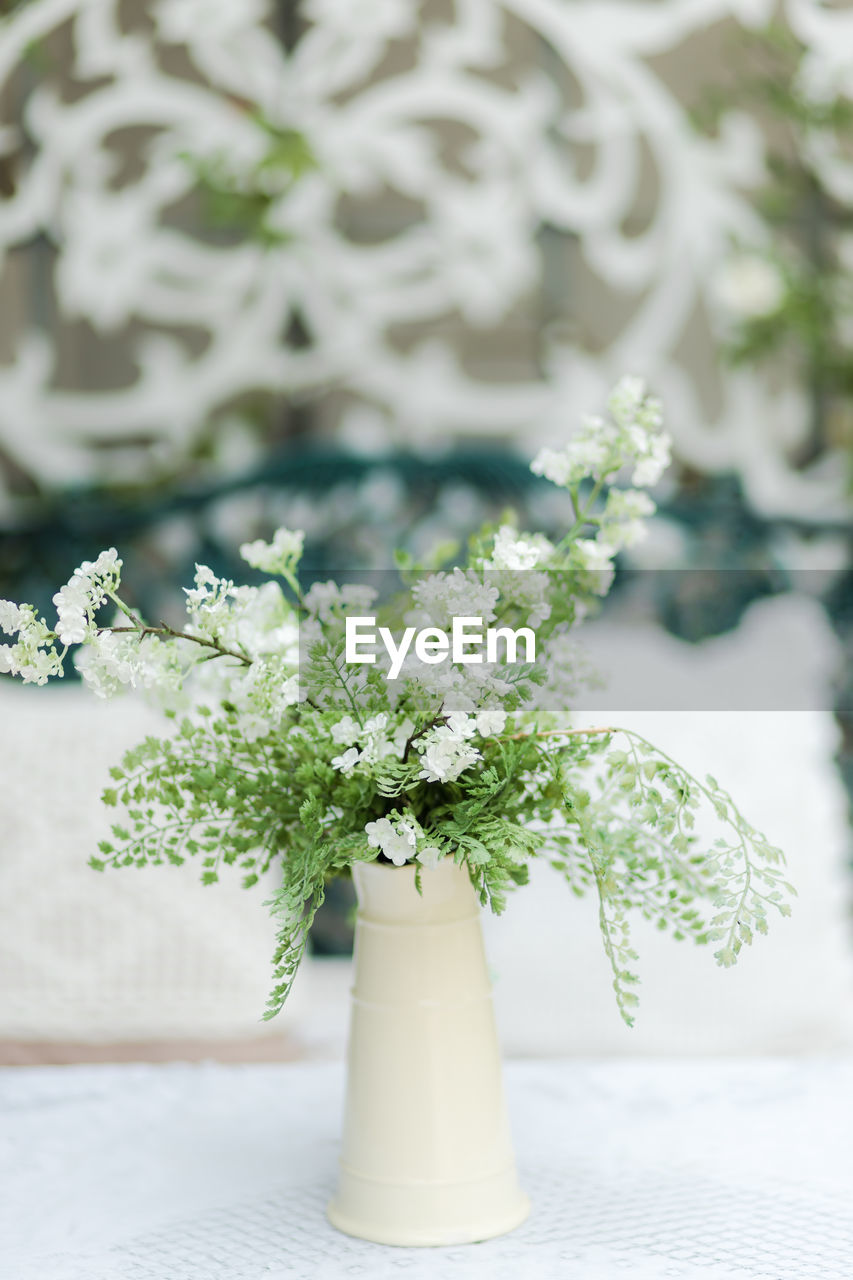plant, flower, flowering plant, freshness, nature, no people, focus on foreground, white color, table, growth, green color, day, close-up, vase, potted plant, indoors, leaf, beauty in nature, selective focus, flower head, flower arrangement, herb, bouquet