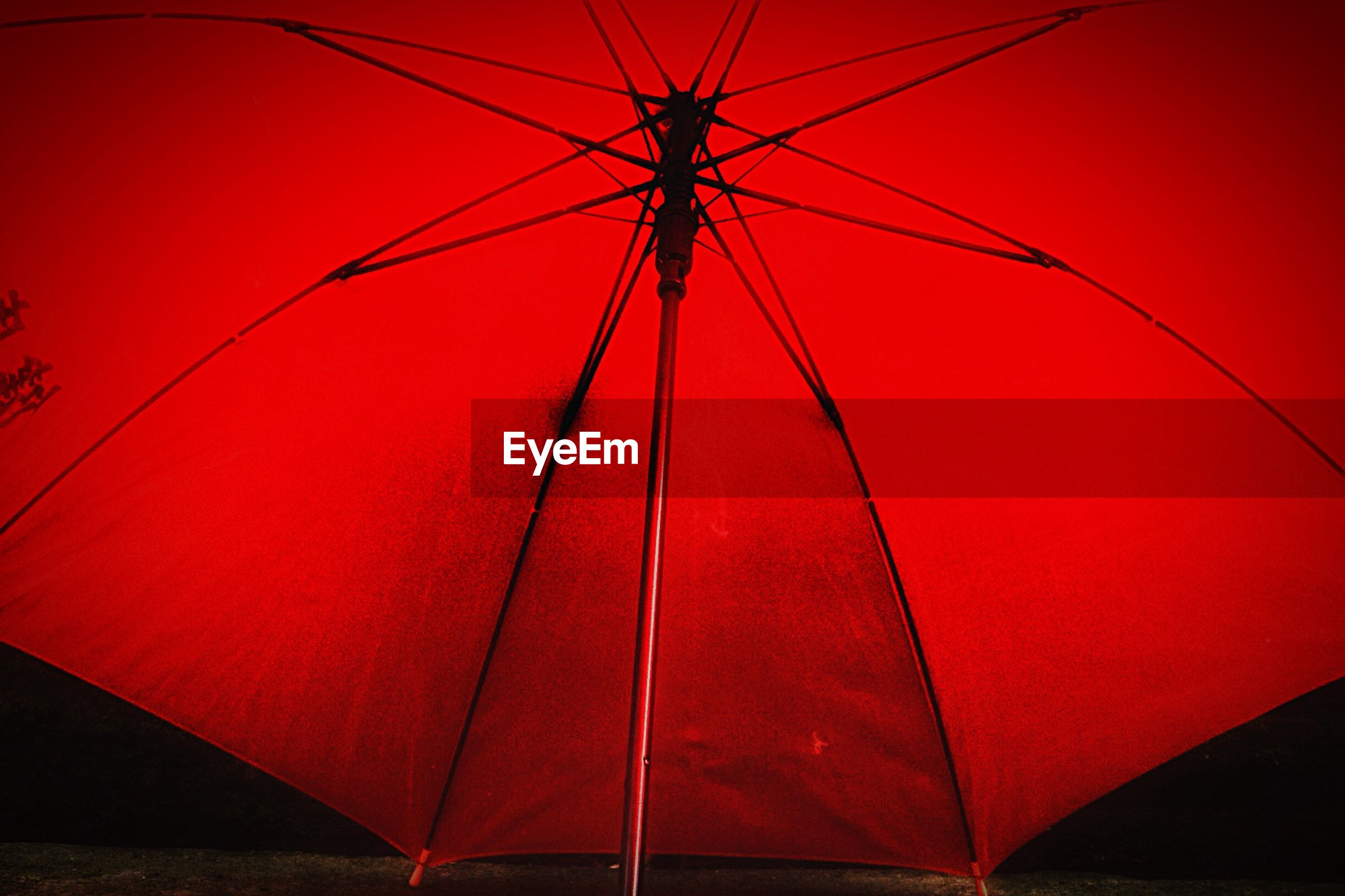 red, no people, low angle view, outdoors, close-up, night