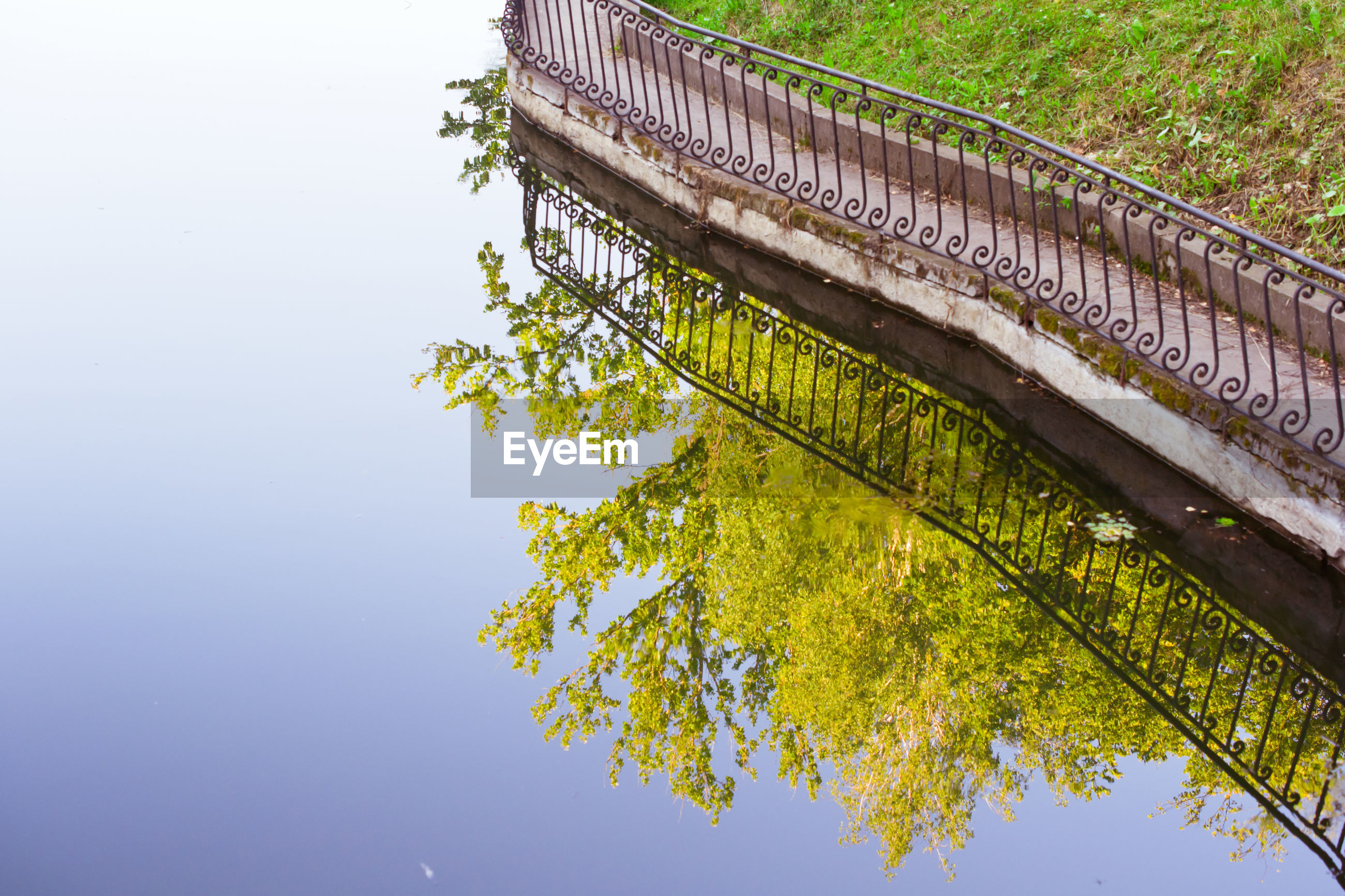 High angle view of tree reflecting in calm lake by railing