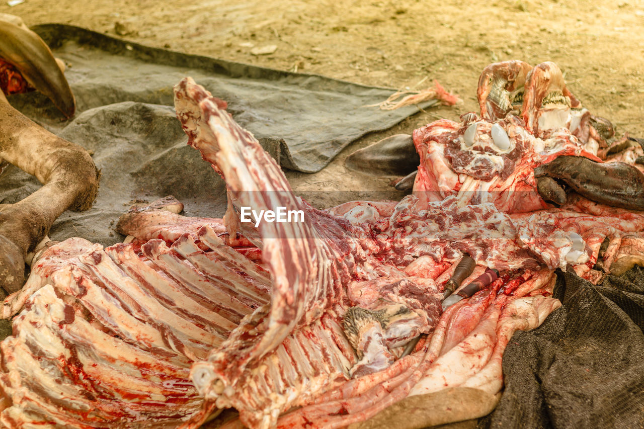 meat, food, raw food, freshness, food and drink, animal, day, retail, animal themes, market, no people, group of animals, high angle view, animal body part, outdoors, nature, for sale, seafood, close-up, fishing industry, marine