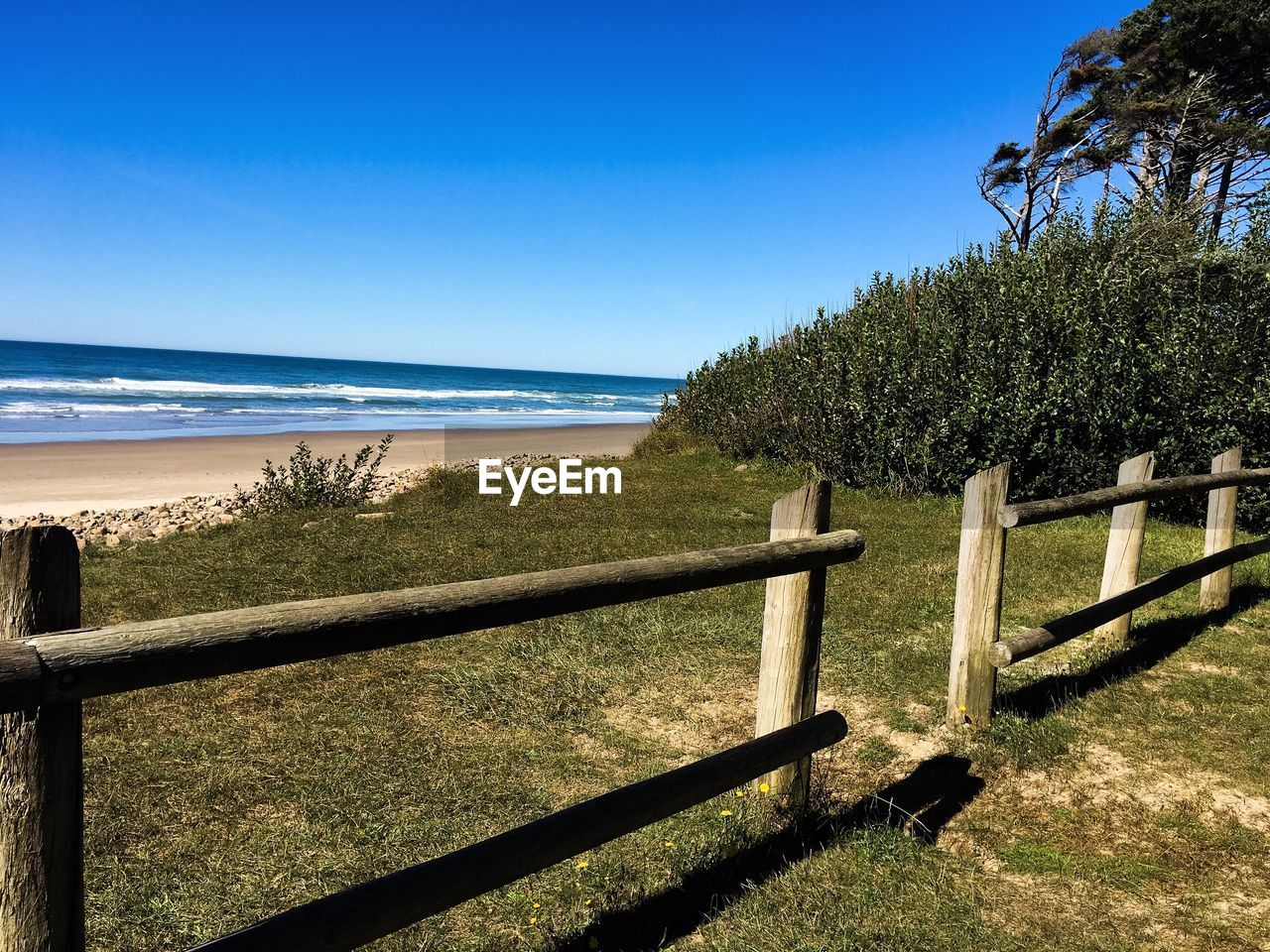 sea, railing, nature, beauty in nature, scenics, tranquil scene, tranquility, beach, tree, water, sunlight, wood - material, day, sky, horizon over water, outdoors, no people, blue, clear sky, grass, growth