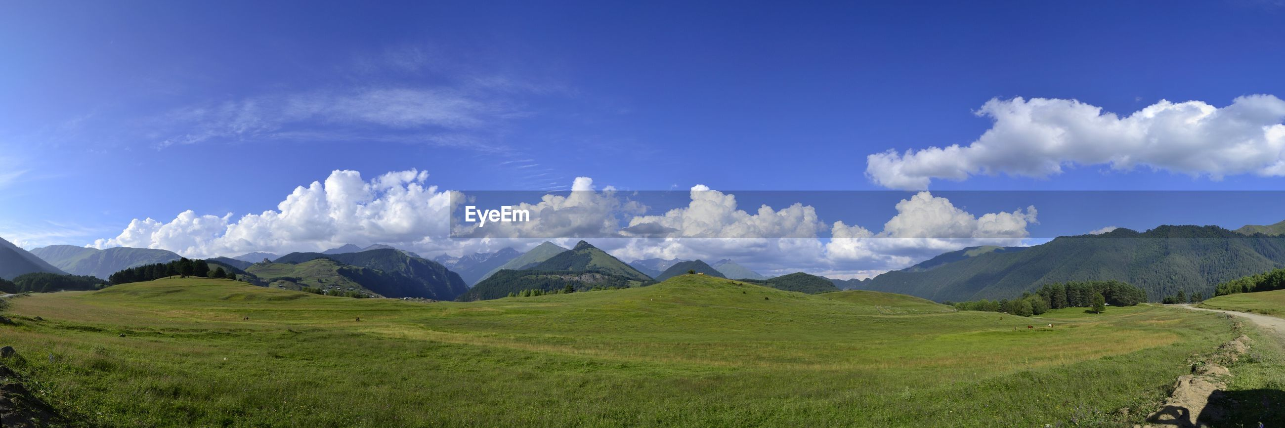 Panoramic view of grassy landscape against sky
