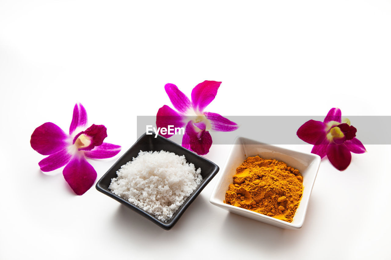 freshness, white background, studio shot, flowering plant, plant, flower, beauty in nature, indoors, close-up, food and drink, nature, food, no people, petal, fragility, vulnerability, flower head, still life, variation, copy space, purple