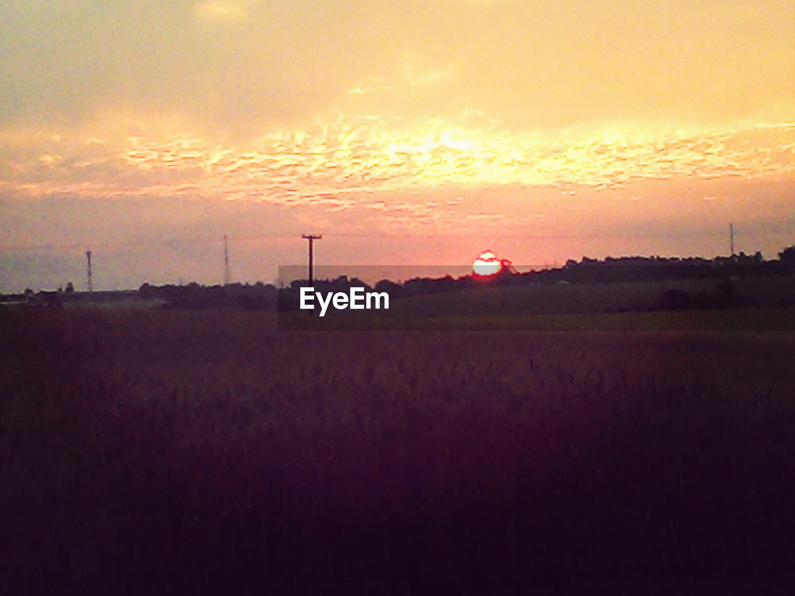 sunset, landscape, sky, field, tranquil scene, scenics, tranquility, beauty in nature, orange color, silhouette, rural scene, cloud - sky, nature, idyllic, agriculture, cloud, dramatic sky, farm, dusk, horizon over land