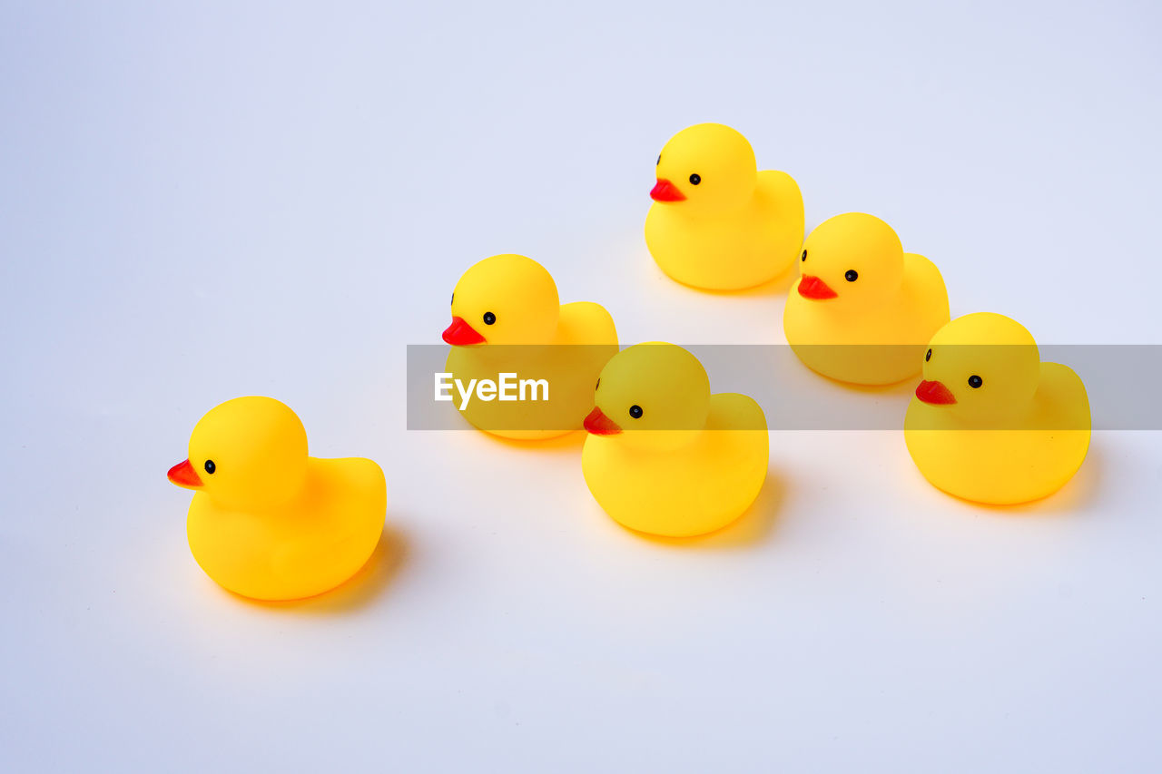yellow, rubber duck, studio shot, animal representation, toy, white background, no people, copy space, representation, still life, indoors, bathtub, water, rubber, bird, close-up, cut out, duck, floating on water