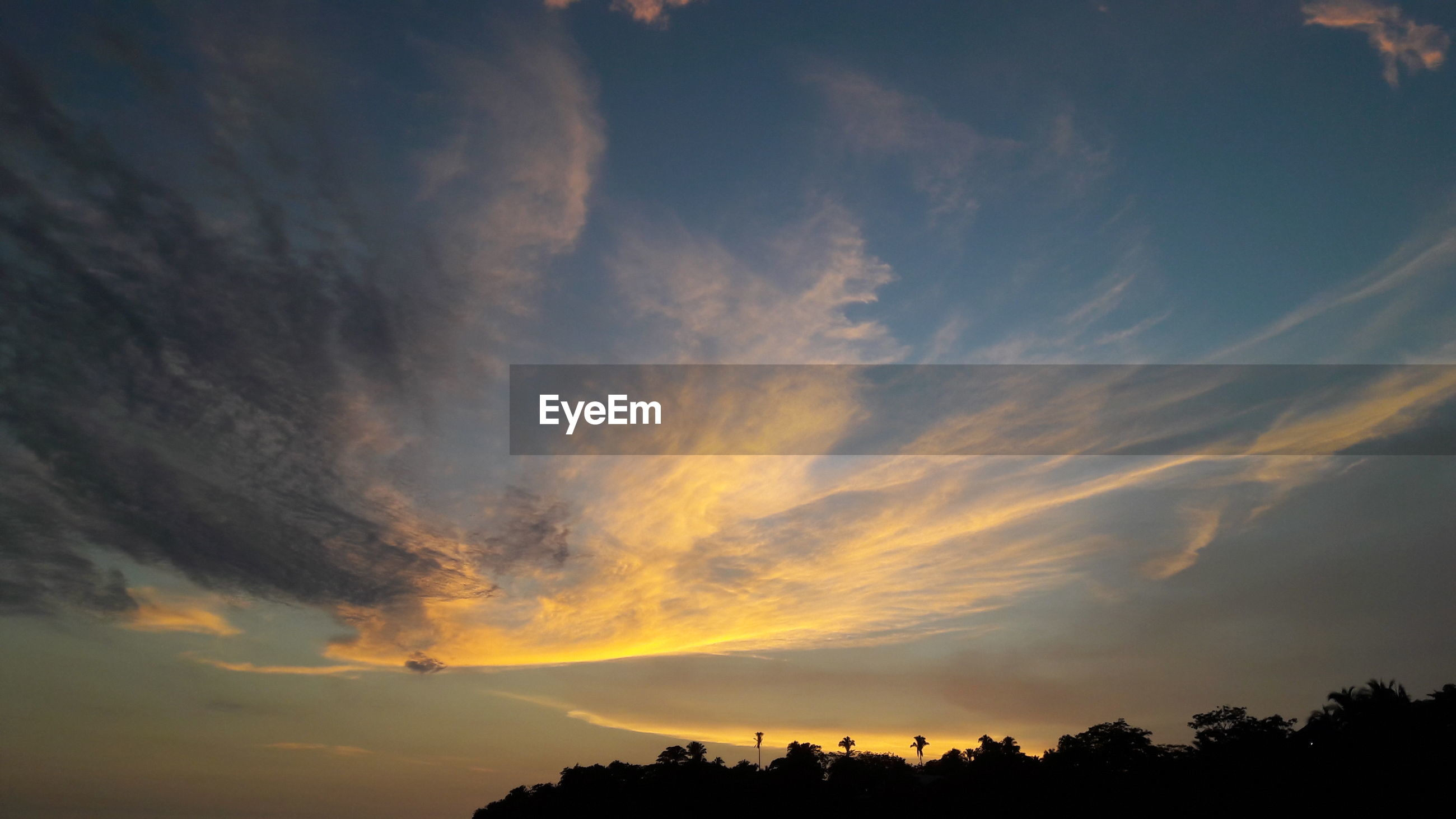 silhouette, sunset, sky, scenics, beauty in nature, cloud - sky, tranquility, tranquil scene, low angle view, nature, idyllic, dramatic sky, tree, cloud, cloudy, orange color, moody sky, outdoors, majestic, no people, weather, cloudscape, outline, overcast, dark, non-urban scene, landscape, blue