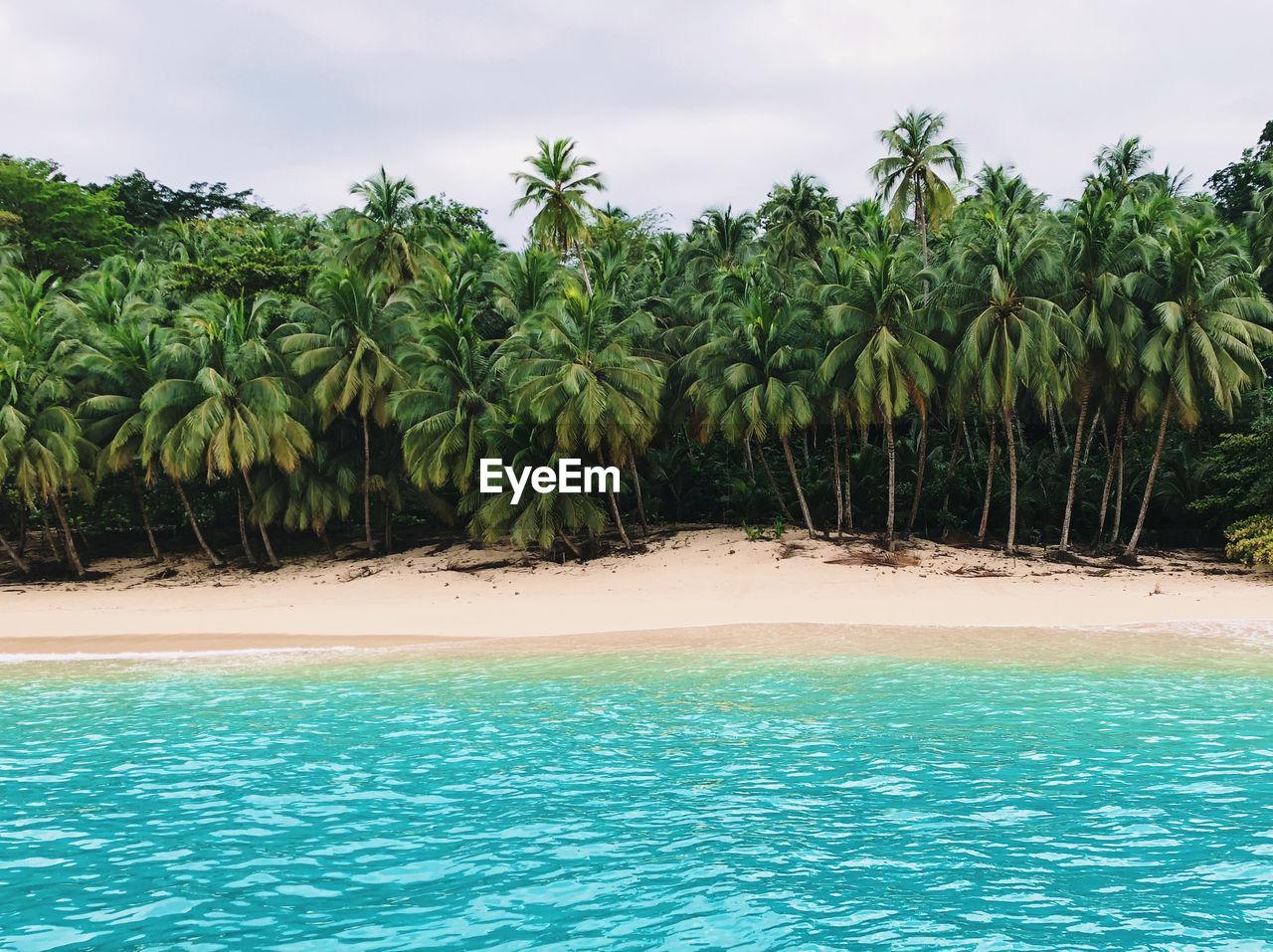 Boi beach, principe