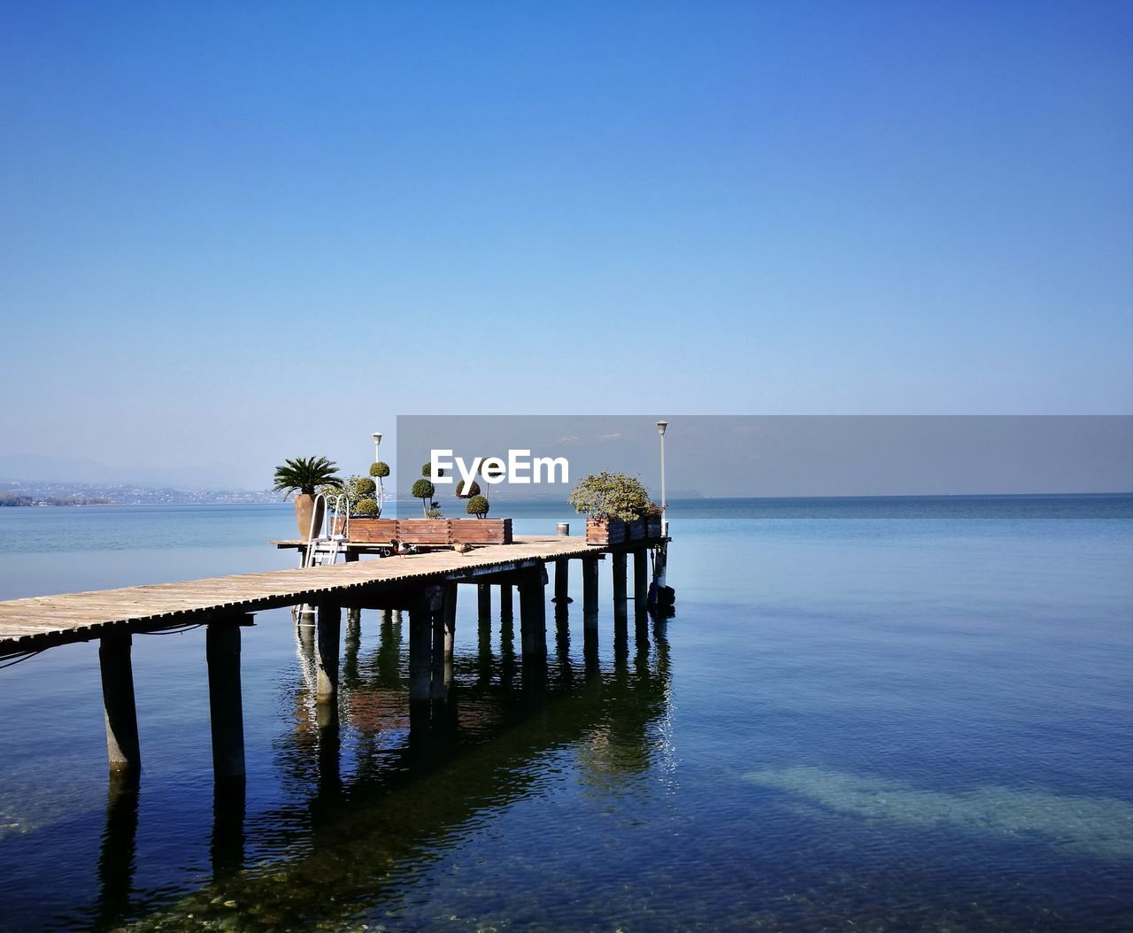 sky, water, sea, horizon over water, scenics - nature, tranquility, horizon, nature, tranquil scene, beauty in nature, day, clear sky, bird, no people, copy space, animal themes, outdoors, animal, animal wildlife