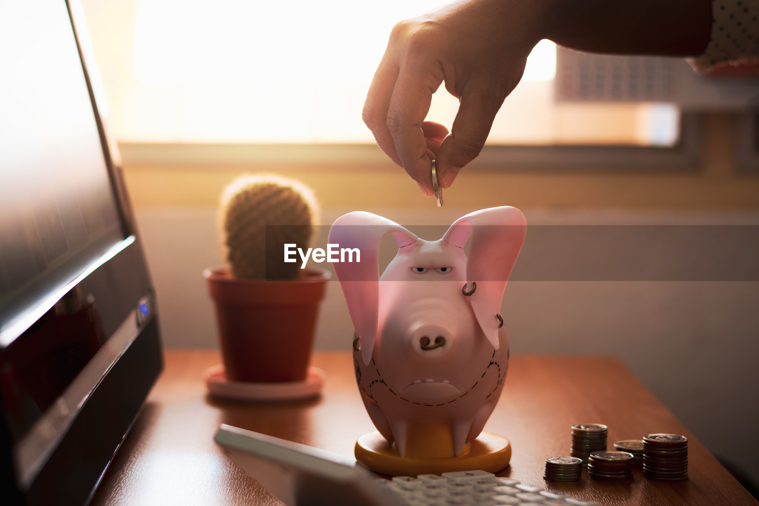 Female hand putting money into piggy bank on working desk.