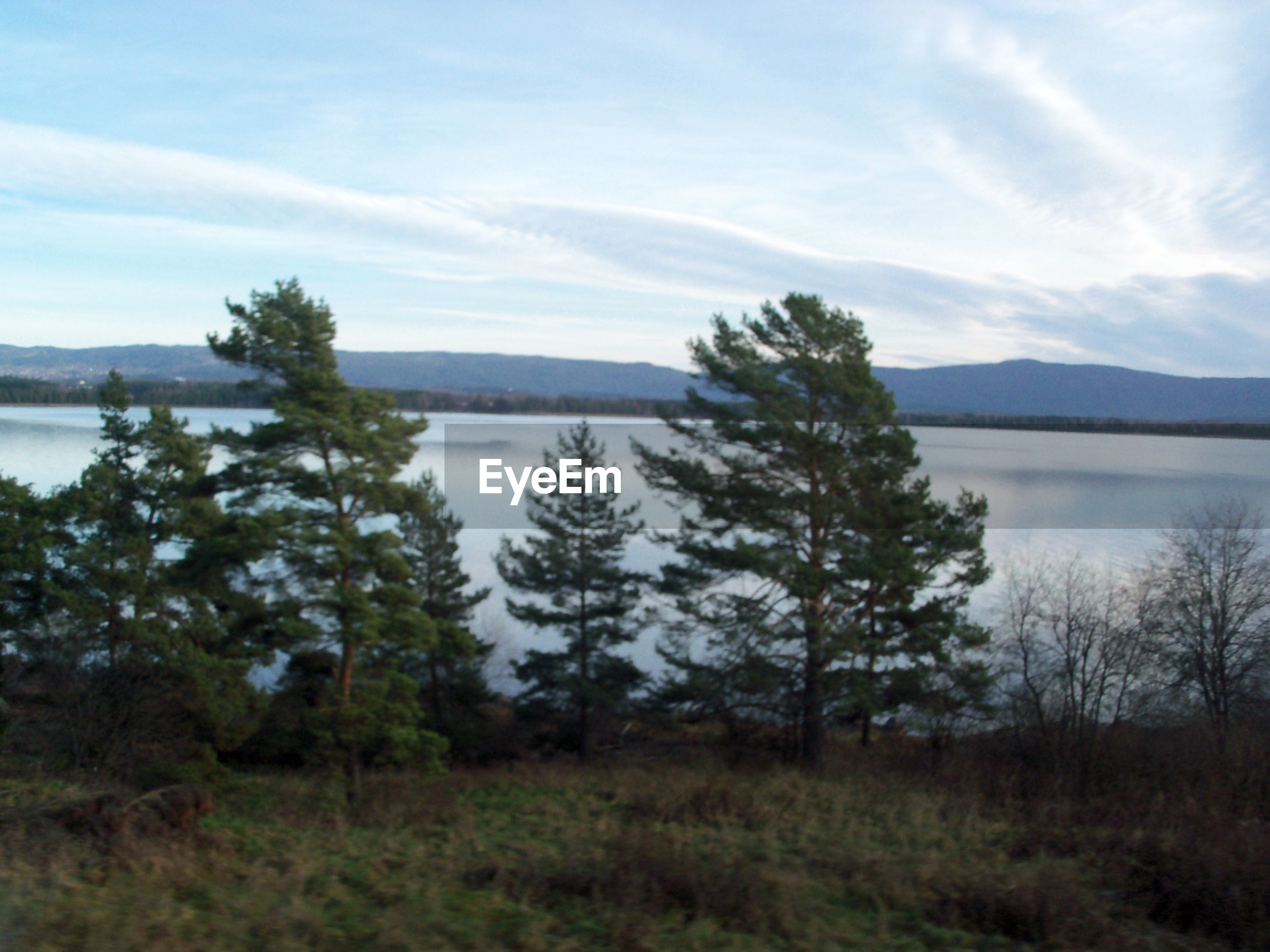 water, tranquil scene, sky, scenics, lake, tree, tranquility, beauty in nature, nature, growth, cloud - sky, mountain, non-urban scene, cloud, sea, day, outdoors, majestic, countryside, no people, cloudscape