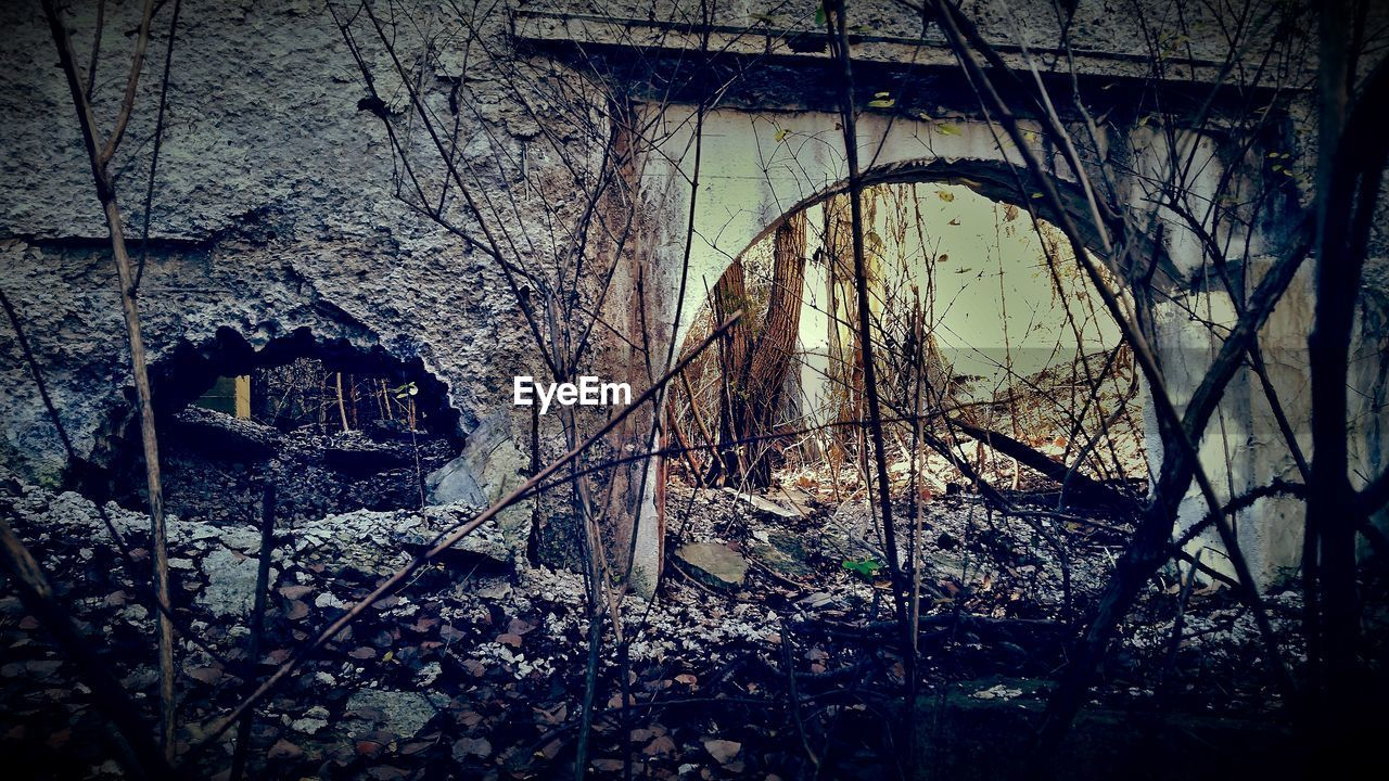 architecture, built structure, arch, abandoned, no people, house, building exterior, bridge - man made structure, day, outdoors, nature