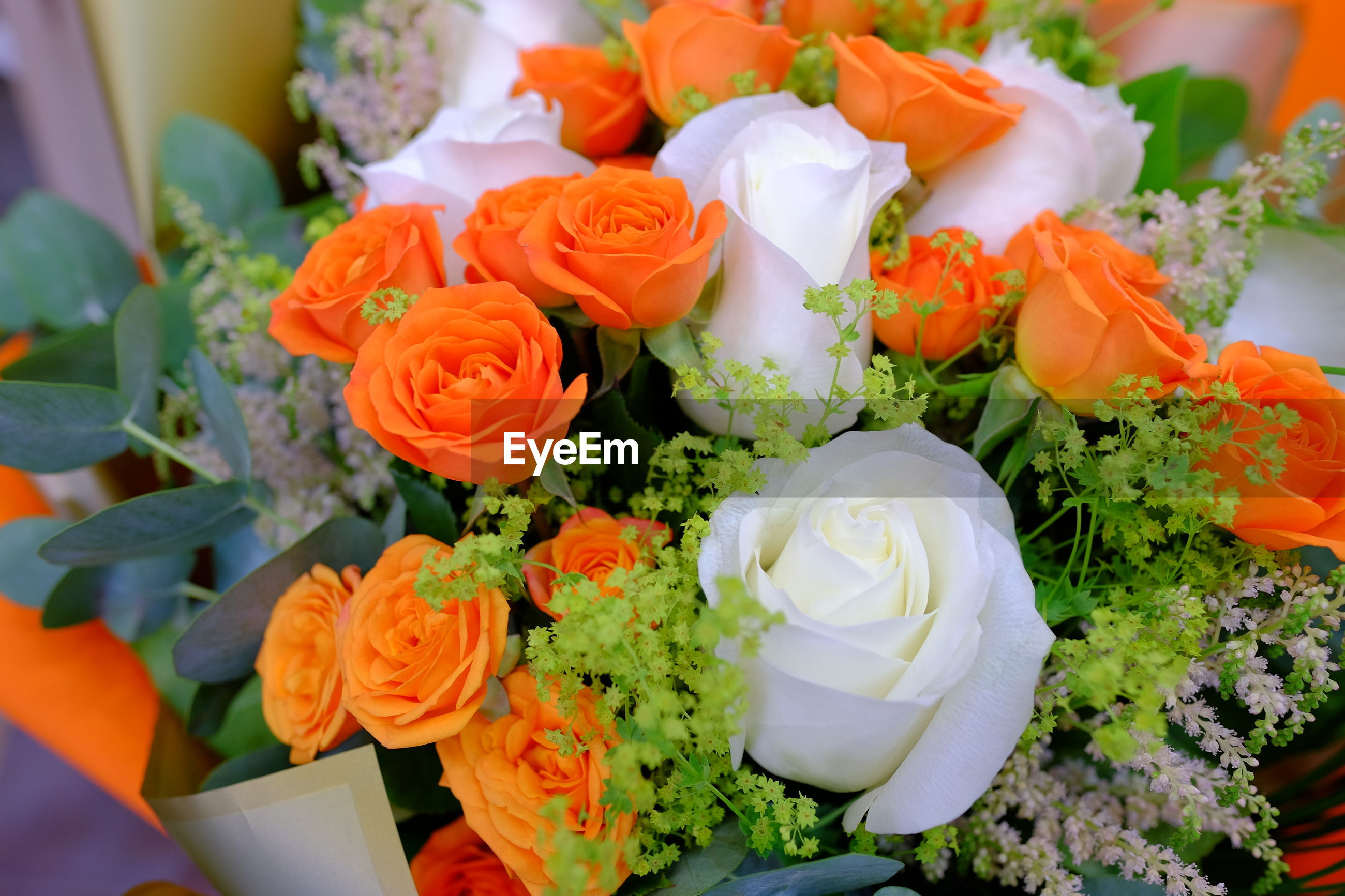 HIGH ANGLE VIEW OF ROSES ON BOUQUET OF PLANT