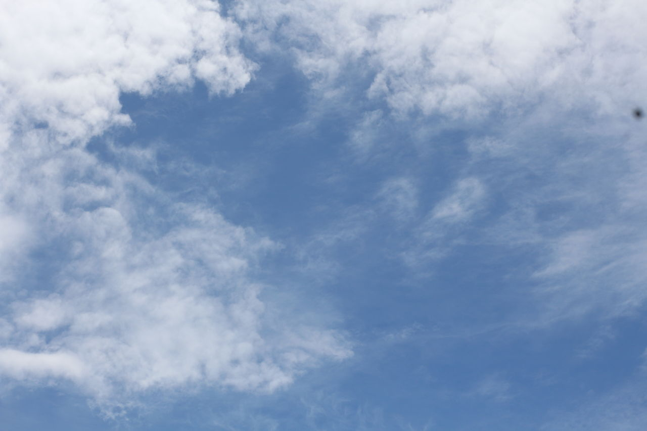 cloud - sky, sky, beauty in nature, low angle view, tranquility, scenics - nature, no people, blue, nature, day, backgrounds, white color, tranquil scene, outdoors, full frame, idyllic, non-urban scene, cloudscape, meteorology, wispy