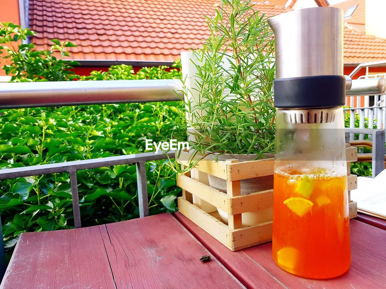 food and drink, plant, freshness, no people, table, growth, container, nature, refreshment, drink, indoors, wood - material, food, still life, glass - material, glass, seat, green color, potted plant
