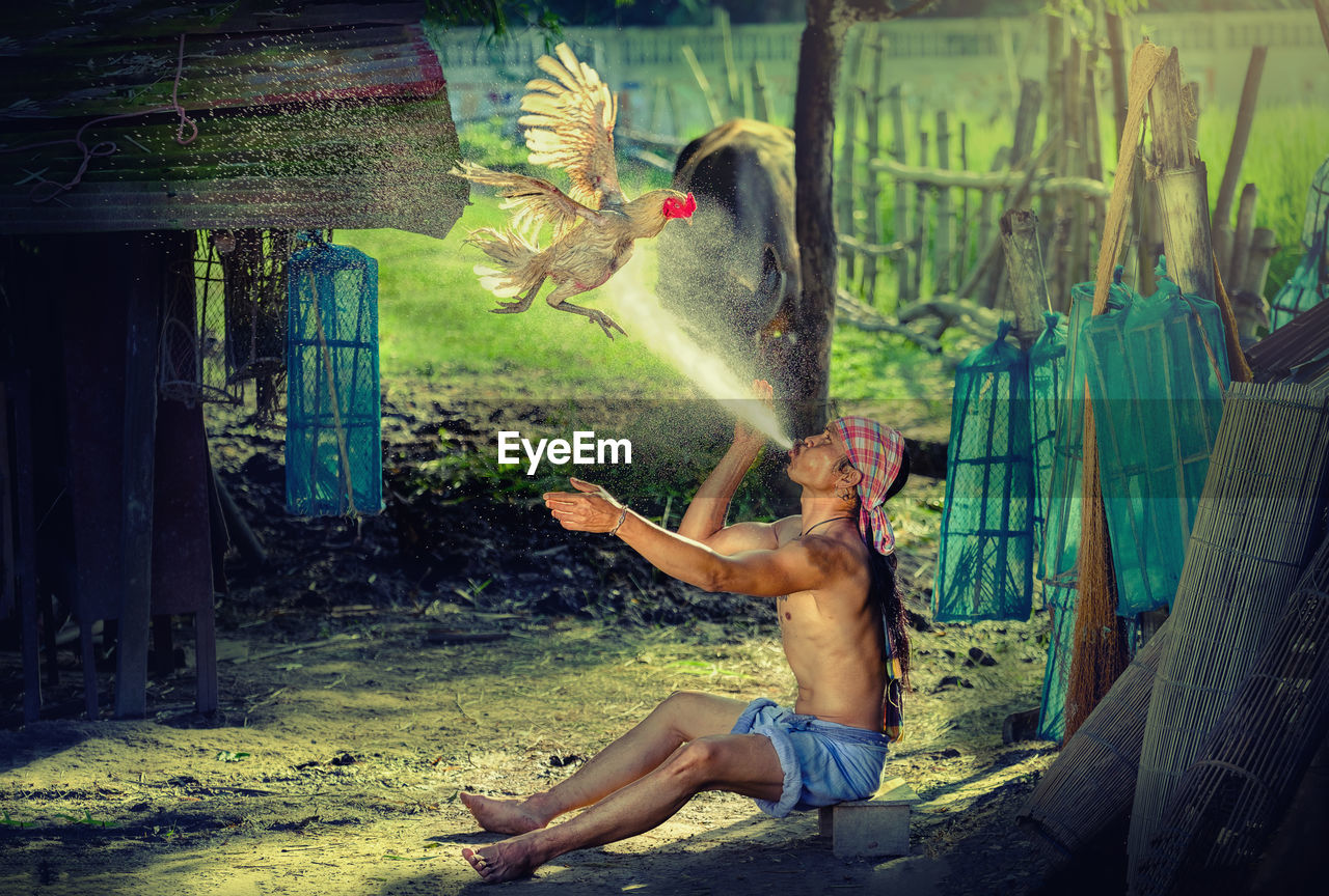 Full Length Of Shirtless Man Spraying Water On Flying Rooster