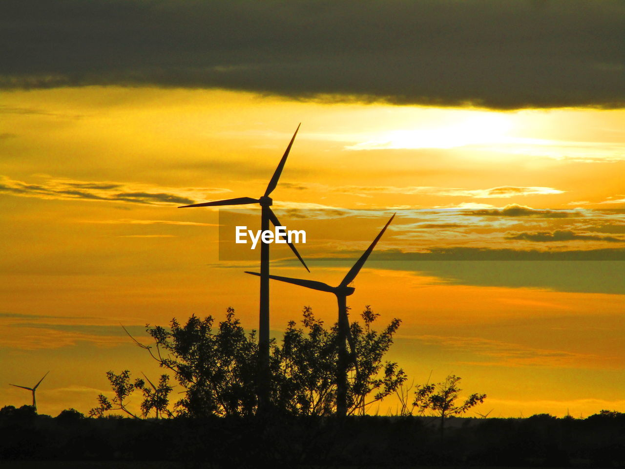 sunset, sky, cloud - sky, renewable energy, silhouette, alternative energy, fuel and power generation, orange color, turbine, environment, beauty in nature, environmental conservation, wind turbine, wind power, scenics - nature, nature, plant, tree, no people, technology, outdoors, sustainable resources, power supply
