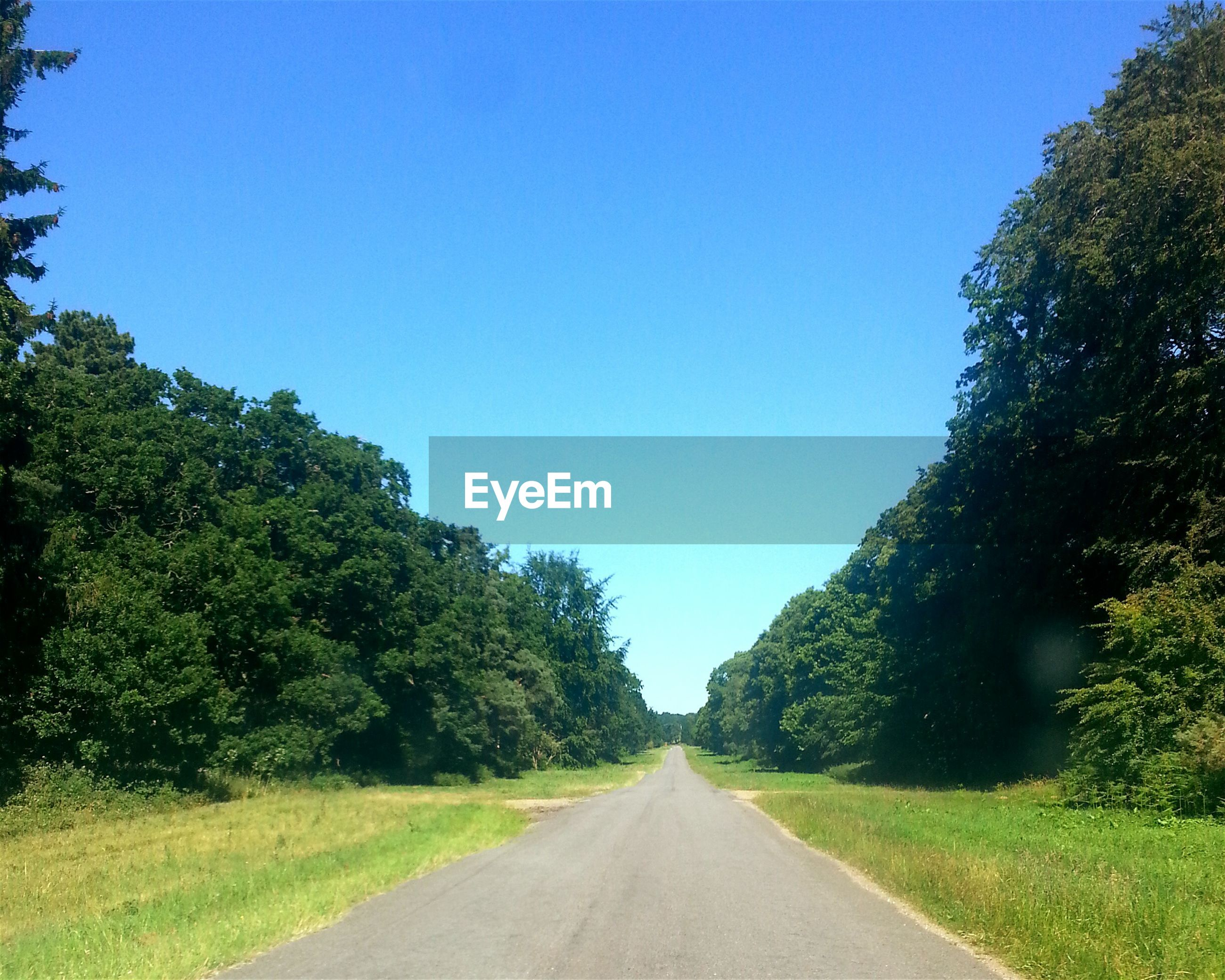 Empty road amidst trees on landscape against clear blue sky