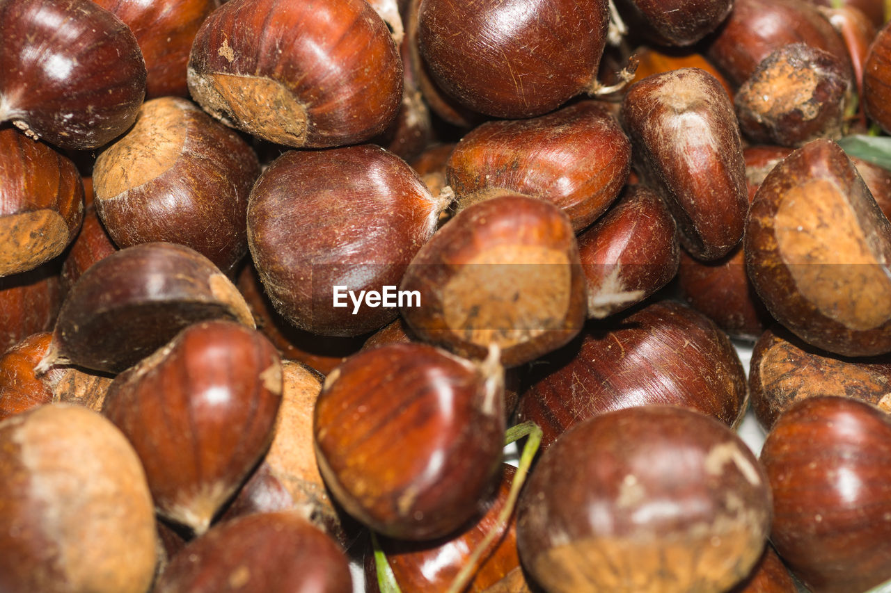 chestnut - food, nut - food, nut, full frame, brown, food, healthy eating, food and drink, wellbeing, large group of objects, chestnut, close-up, still life, backgrounds, freshness, abundance, no people, hazelnut, indoors, fruit