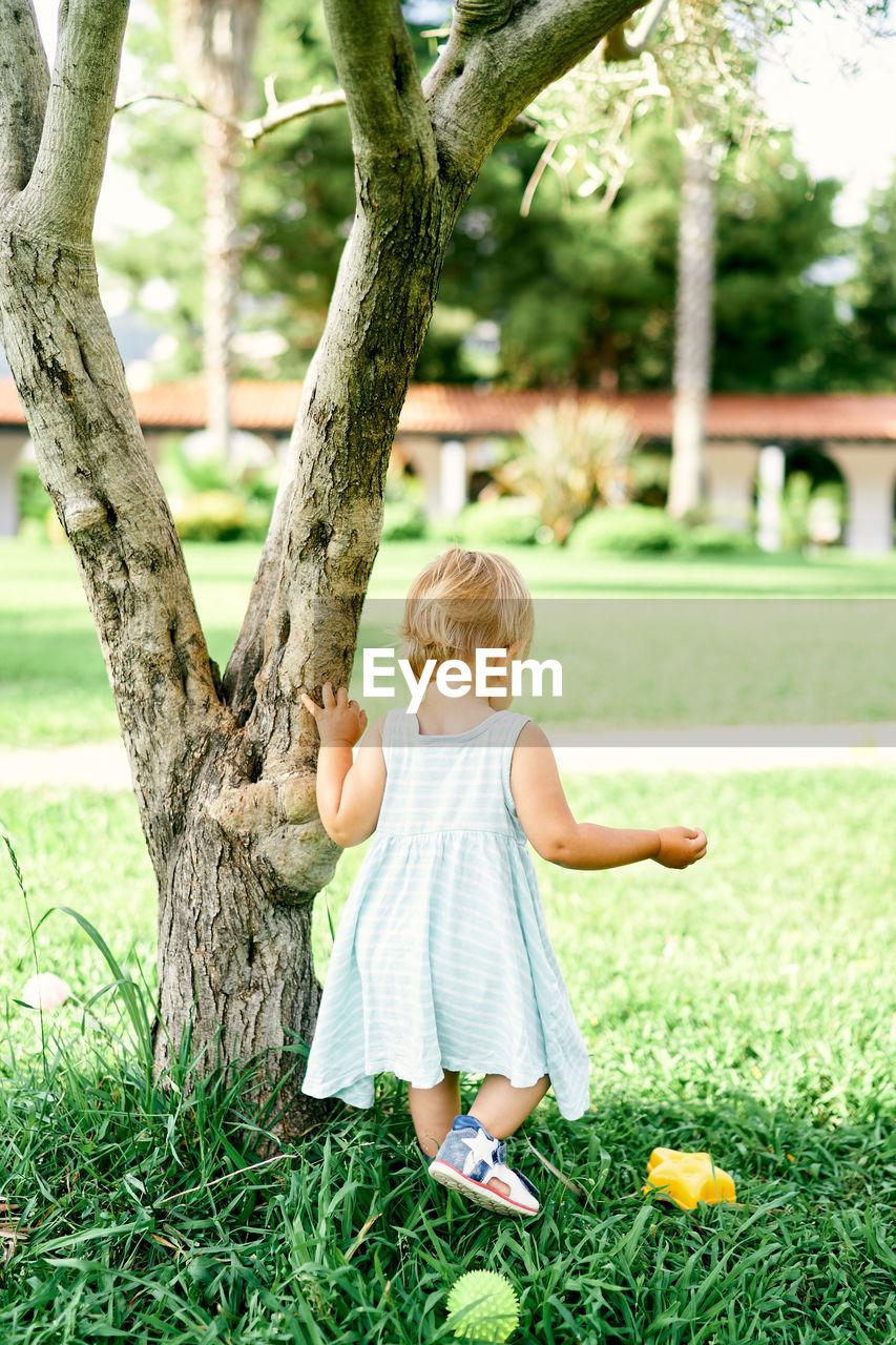 FULL LENGTH REAR VIEW OF BOY ON TREE
