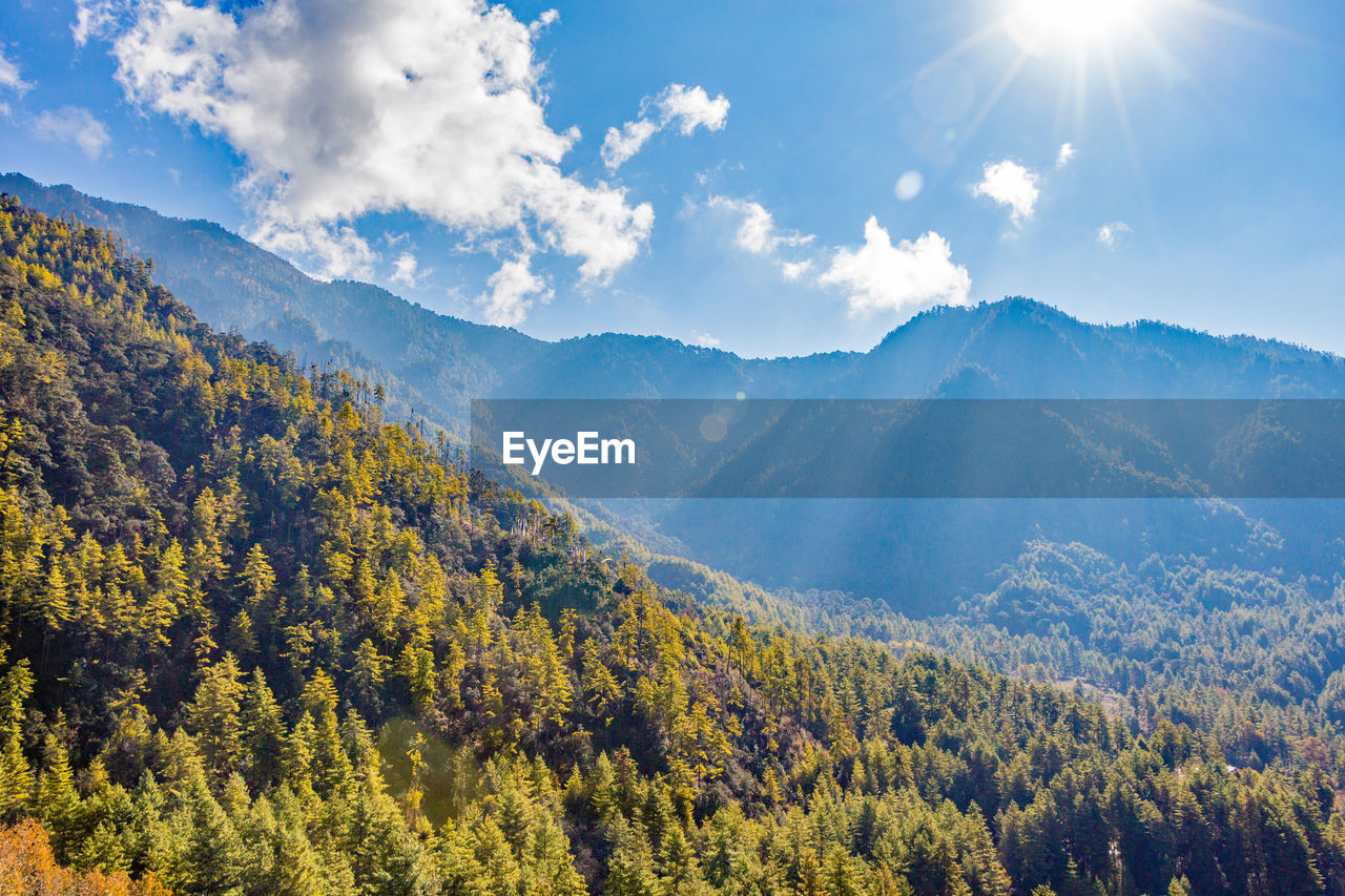 beauty in nature, scenics - nature, tranquil scene, mountain, tranquility, plant, sky, tree, sunlight, cloud - sky, non-urban scene, nature, mountain range, idyllic, environment, no people, landscape, day, sunbeam, remote, outdoors, lens flare, bright, coniferous tree