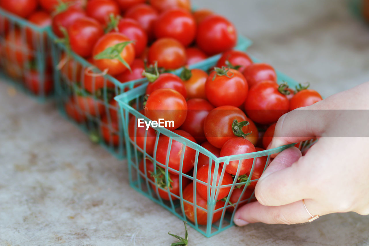 Cropped Image Of Hand Holding Cherry Tomatoes In Container