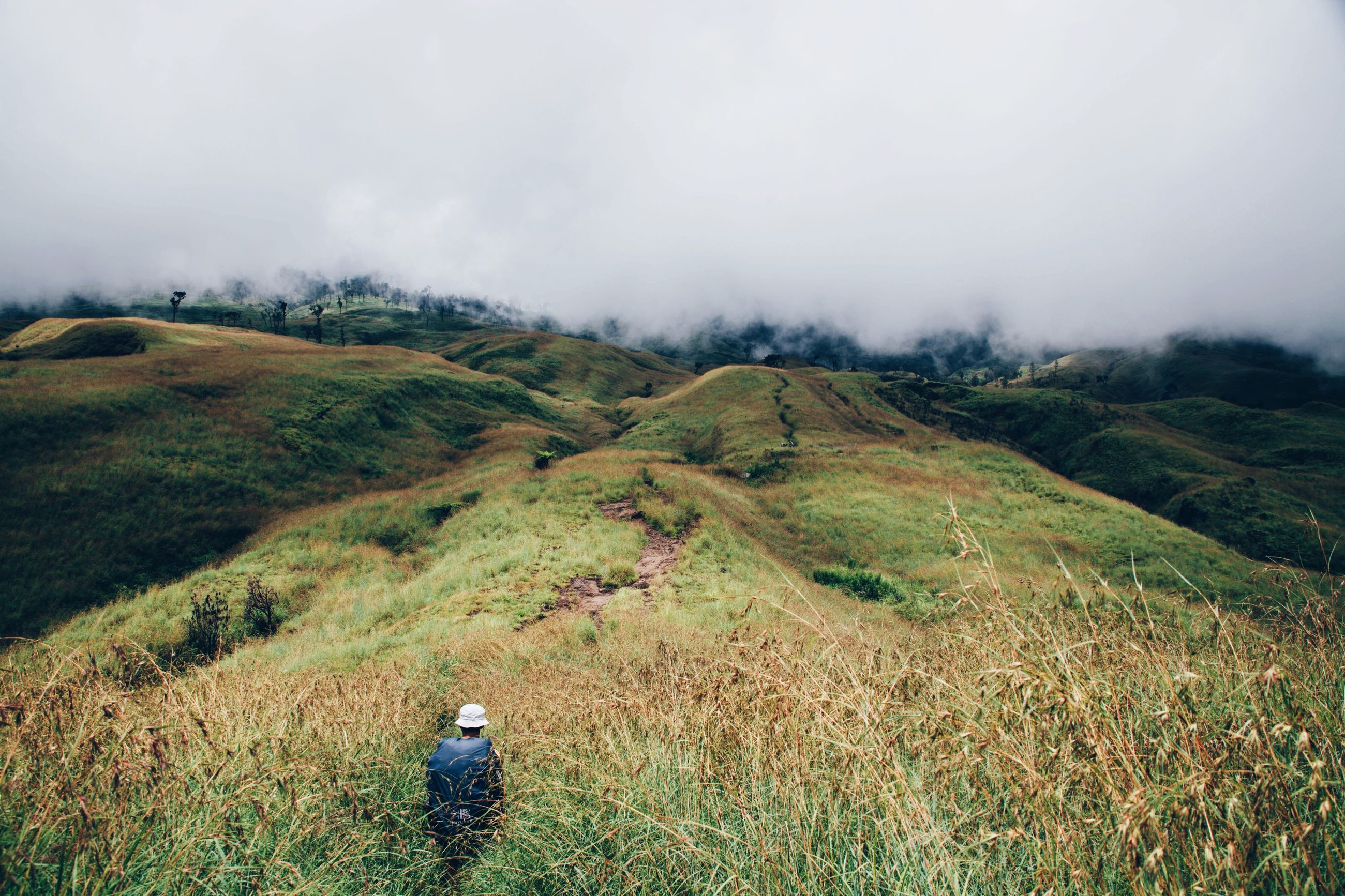 Rear view of hiker on grassy field against mountains