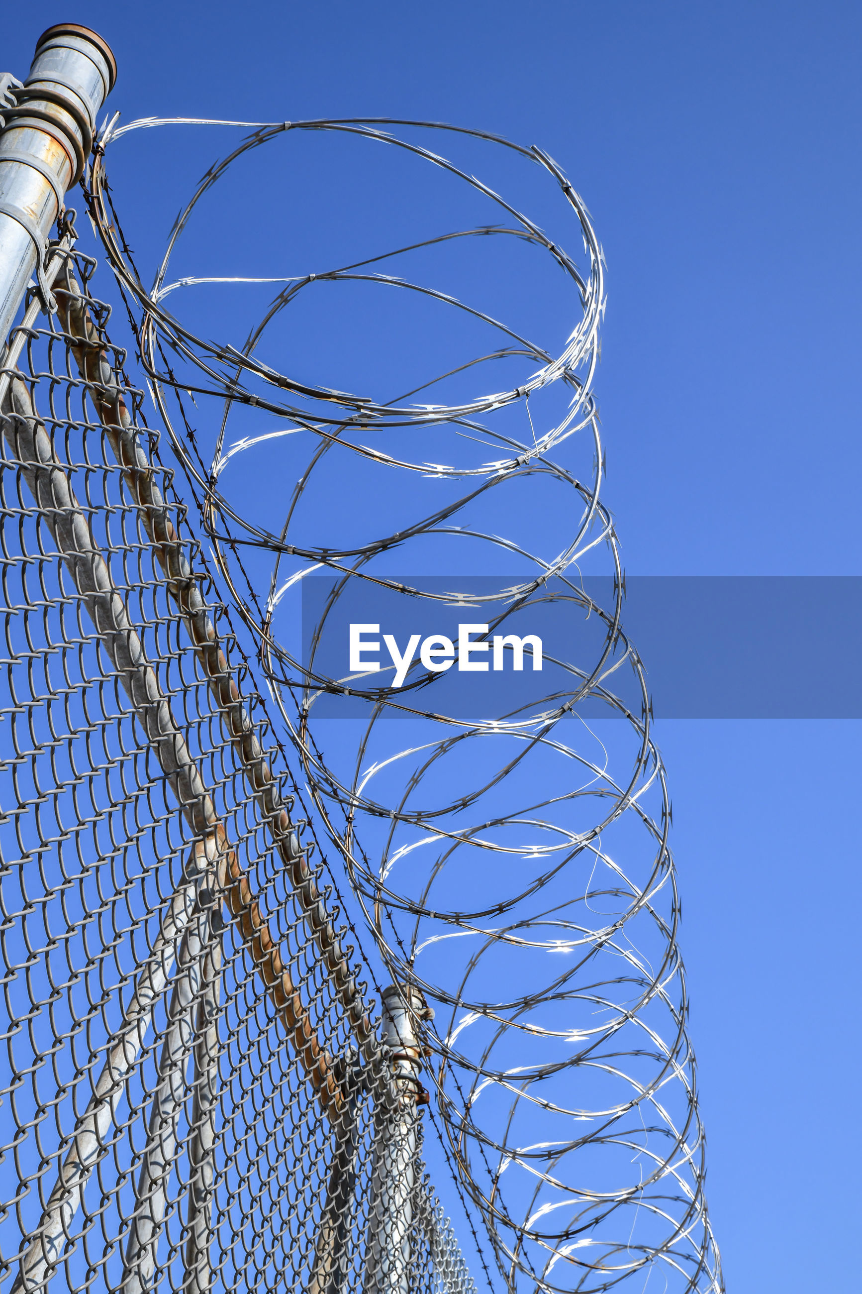 Razor wire on top of metal fence