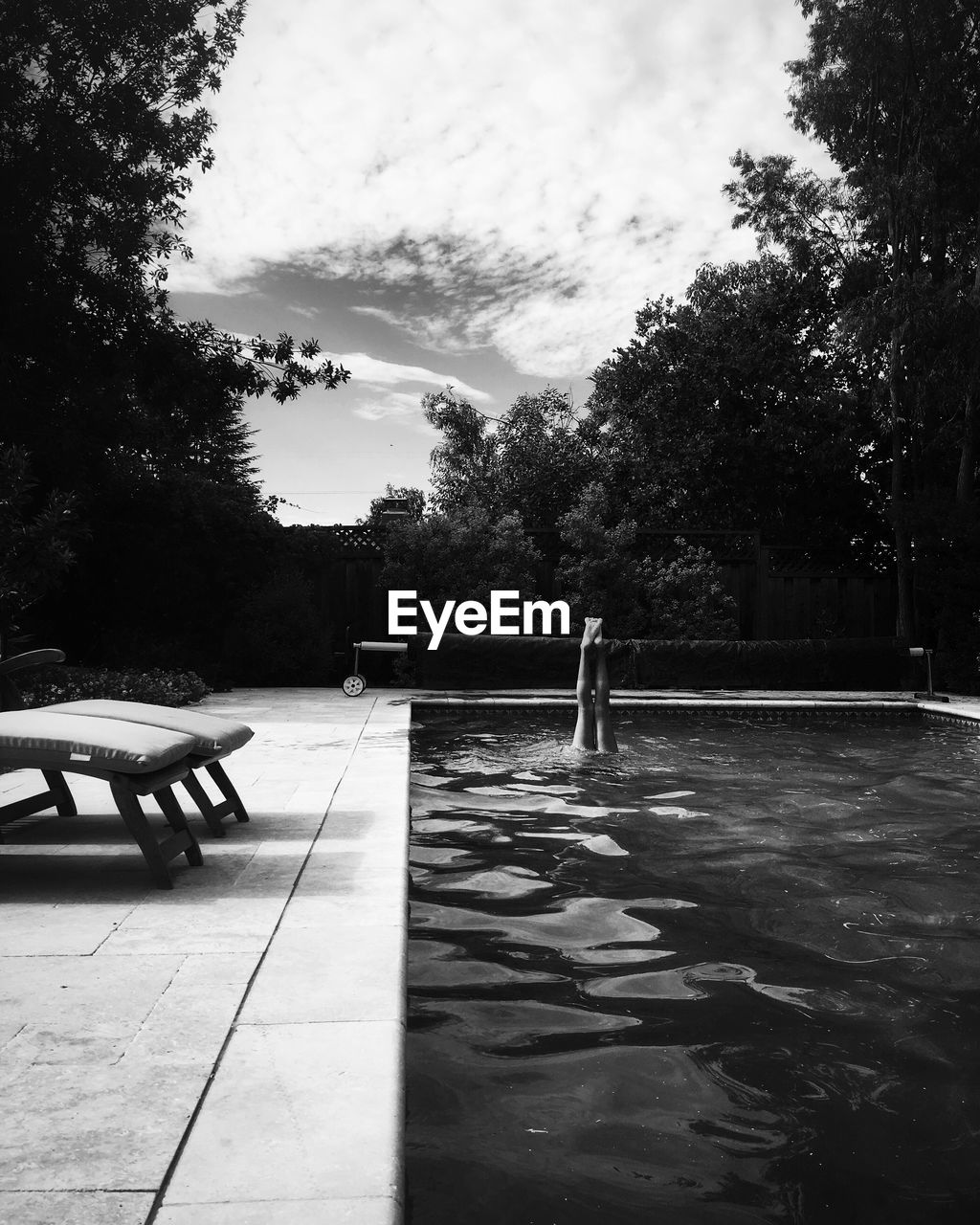 tree, sky, swimming pool, water, nature, outdoors, growth, day, one person, people