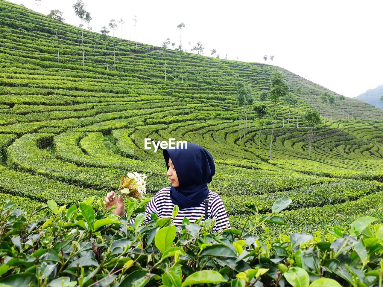agriculture, farm, real people, field, women, tea crop, one person, landscape, rear view, rice paddy, growth, cultivated land, crop, rice - cereal plant, nature, plant, terraced field, rural scene, casual clothing, asian style conical hat, outdoors, farmer, day, beauty in nature, lifestyles, mountain, scenics, young women, young adult, sky, adult, people
