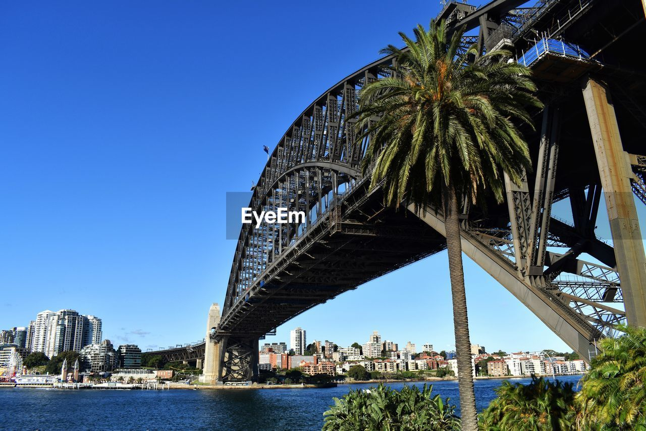 architecture, built structure, bridge, sky, water, bridge - man made structure, connection, transportation, clear sky, nature, river, plant, tree, engineering, travel destinations, day, city, building exterior, outdoors, arch bridge