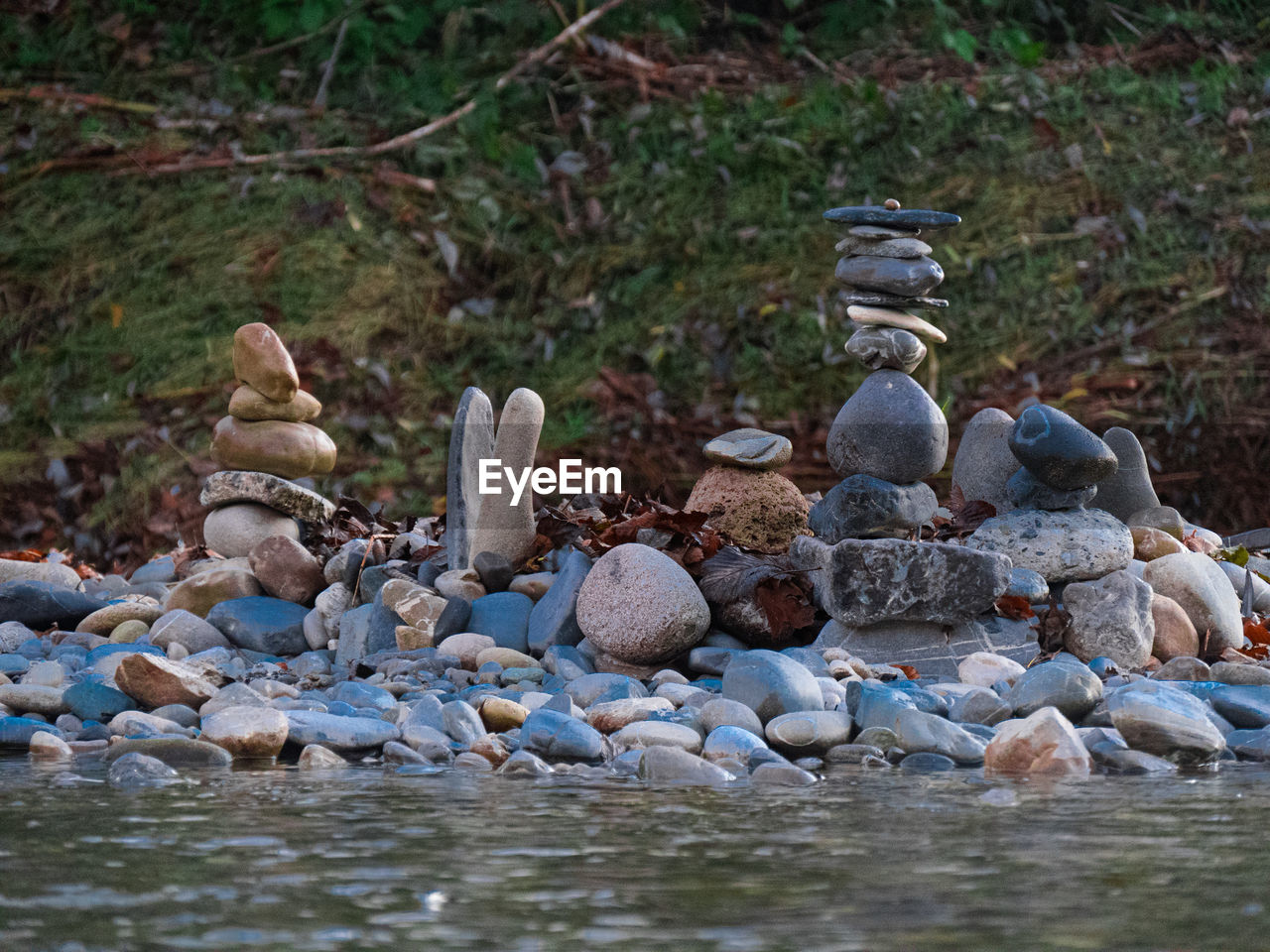solid, rock, day, no people, water, nature, rock - object, stone - object, stone, land, animal wildlife, group of animals, focus on foreground, animals in the wild, animal, outdoors, selective focus, bird, abundance, pebble