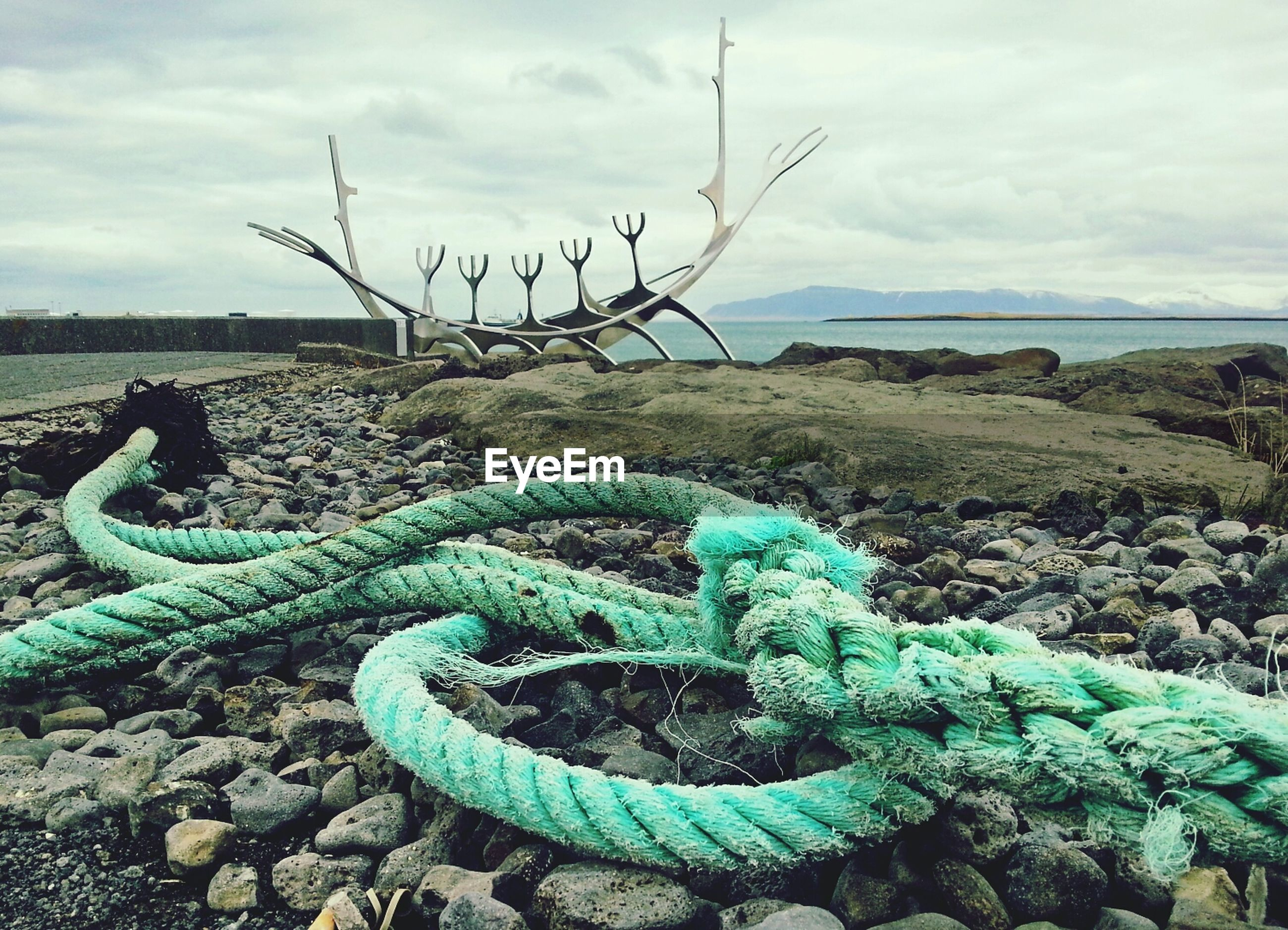 Green rope on shore