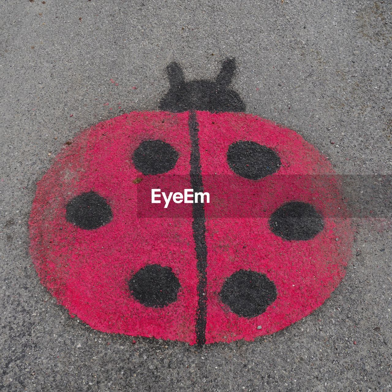 Close-up of ladybug painted on wall