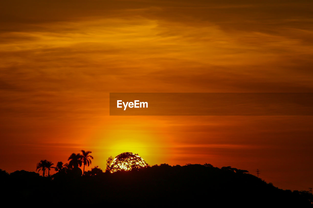 sunset, sky, silhouette, beauty in nature, orange color, scenics - nature, cloud - sky, tranquility, tranquil scene, tree, idyllic, nature, plant, no people, non-urban scene, dramatic sky, outdoors, low angle view, land, environment, romantic sky