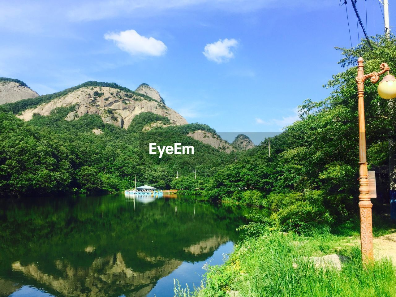 plant, mountain, reflection, water, tree, sky, beauty in nature, nature, cloud - sky, tranquility, tranquil scene, scenics - nature, day, no people, lake, green color, growth, mountain range, waterfront, outdoors