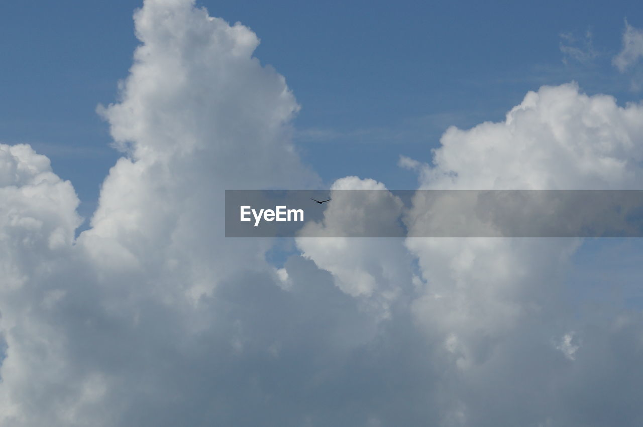 cloud - sky, sky, nature, beauty in nature, sky only, day, backgrounds, no people, low angle view, scenics, outdoors