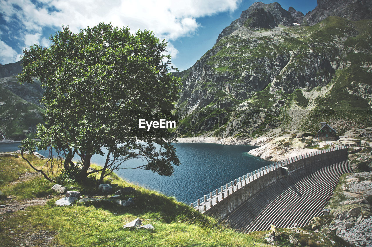 HIGH ANGLE VIEW OF DAM ON TREE AGAINST SKY