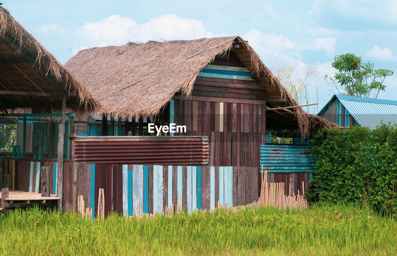 built structure, architecture, roof, plant, house, building, building exterior, sky, day, grass, hut, nature, no people, land, thatched roof, tree, wood - material, cloud - sky, field, outdoors, cottage, cabin
