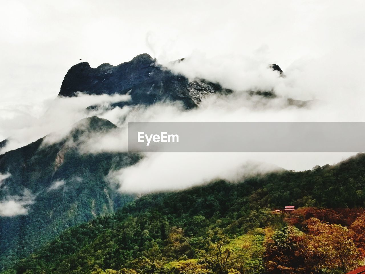 nature, mountain, beauty in nature, scenics, outdoors, day, sky, landscape, tranquil scene, tranquility, no people, cloud - sky, mountain range, cold temperature, tree