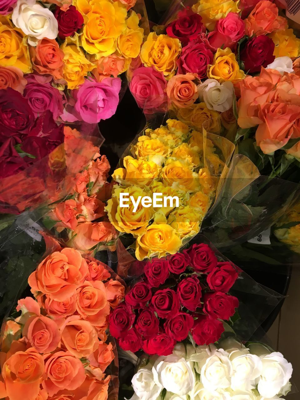 flower, multi colored, variation, retail, rose - flower, bouquet, choice, for sale, flower market, fragility, flower shop, freshness, flower head, backgrounds, petal, no people, market, small business, indoors, beauty in nature, full frame, nature, day, close-up, florist