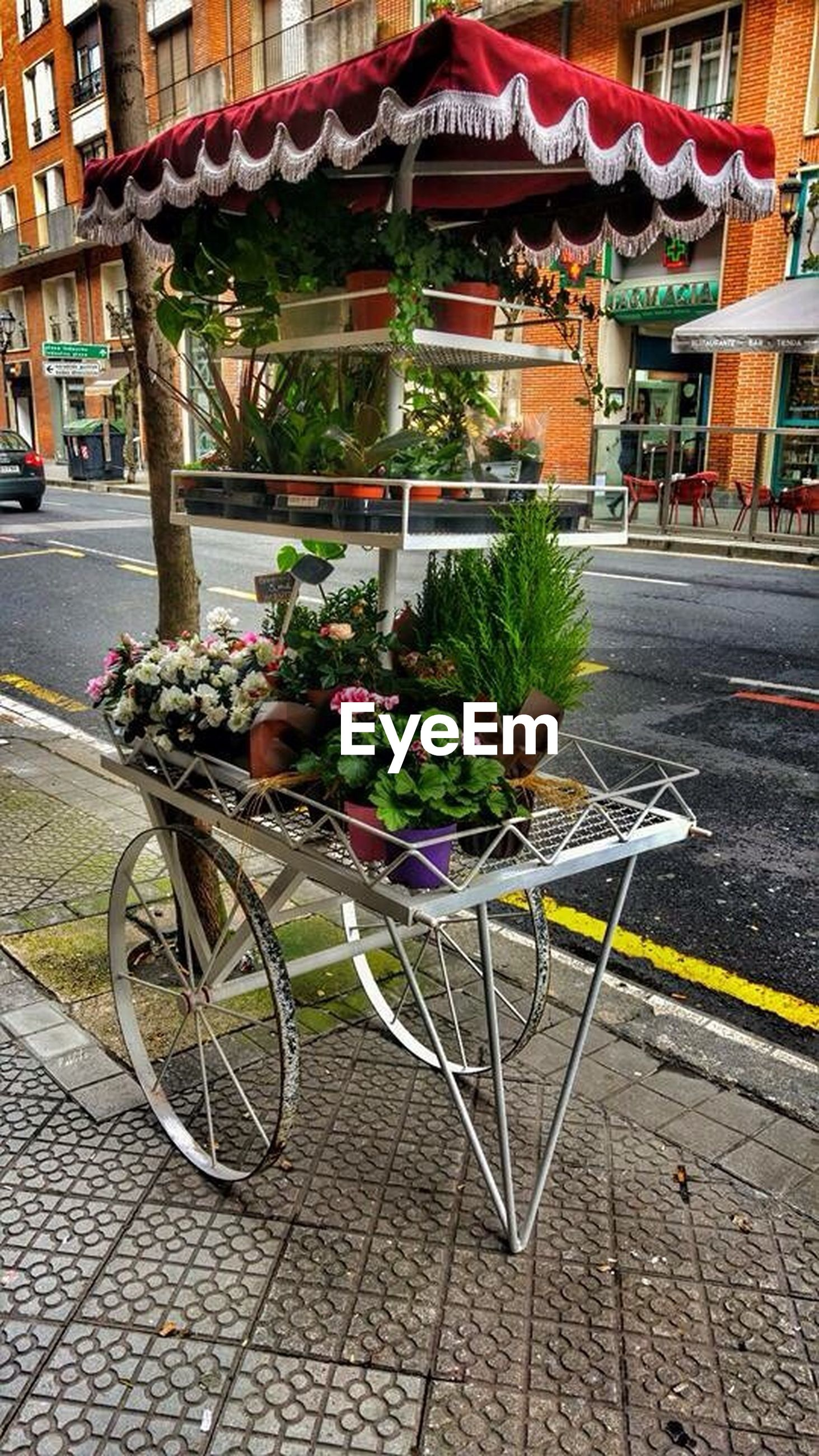 building exterior, architecture, built structure, street, city, bicycle, cobblestone, sidewalk, potted plant, transportation, flower, land vehicle, paving stone, outdoors, mode of transport, day, plant, footpath, parking, no people