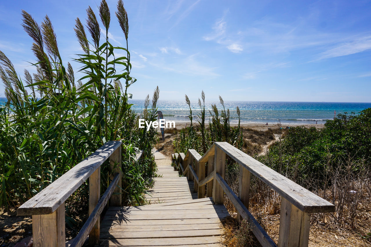 sky, sea, water, horizon over water, plant, nature, horizon, land, wood - material, railing, beach, beauty in nature, scenics - nature, day, tranquility, tranquil scene, no people, direction, growth, outdoors, long