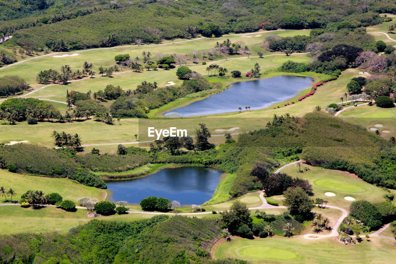 water, plant, grass, tree, green color, nature, lake, golf course, golf, day, landscape, sport, environment, activity, scenics - nature, no people, leisure activity, outdoors, green - golf course