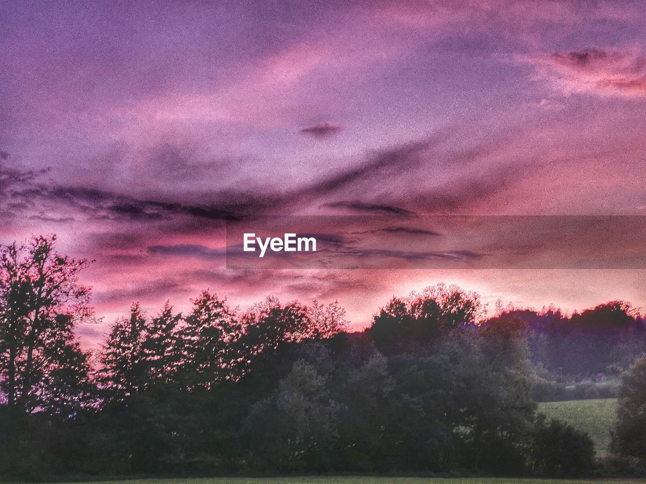 tree, sky, cloud - sky, plant, beauty in nature, sunset, scenics - nature, tranquility, tranquil scene, no people, nature, silhouette, pink color, idyllic, dramatic sky, non-urban scene, outdoors, growth, low angle view, purple, romantic sky