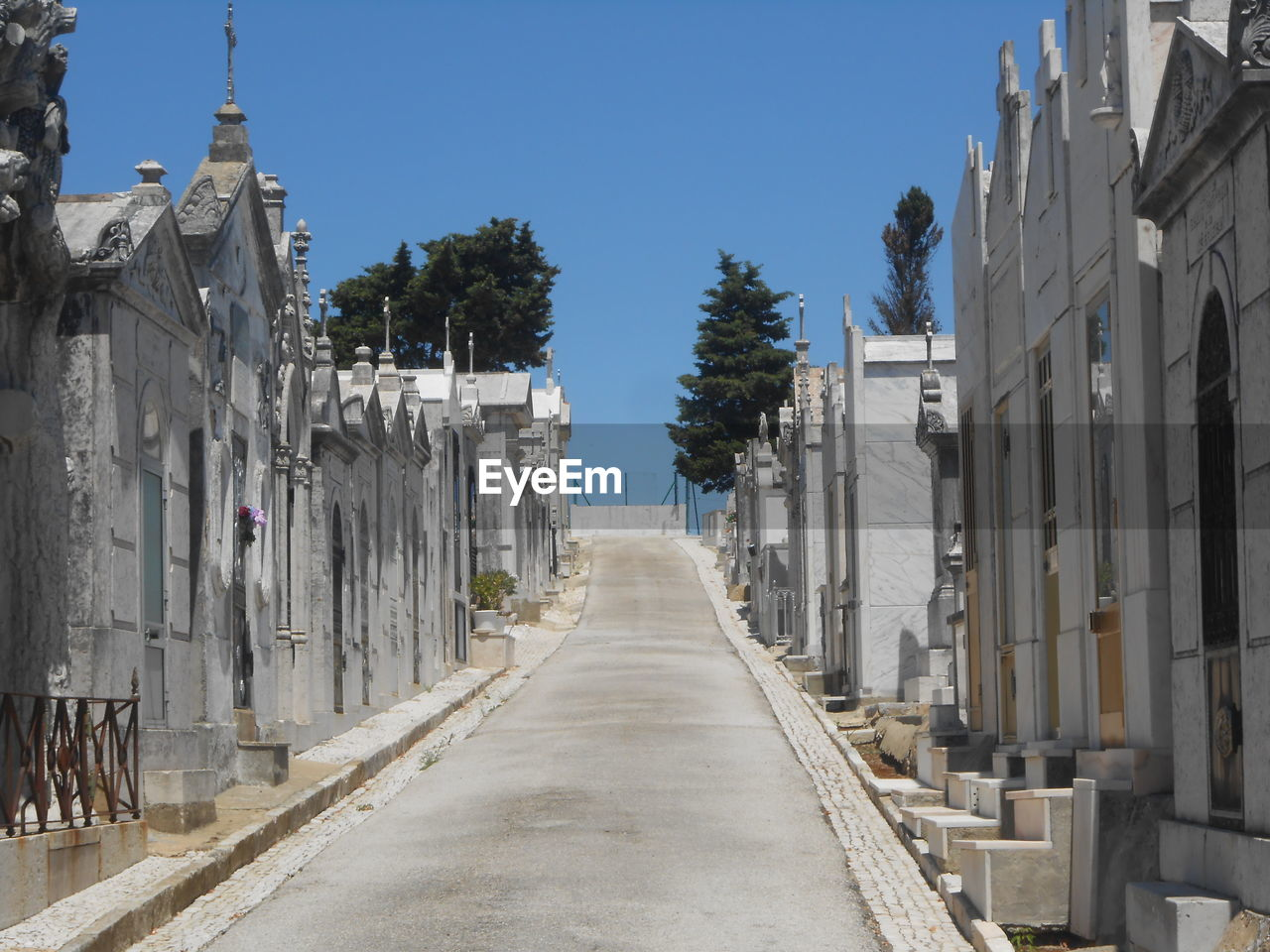 Low Angle View Of Footpath Through Cemetery