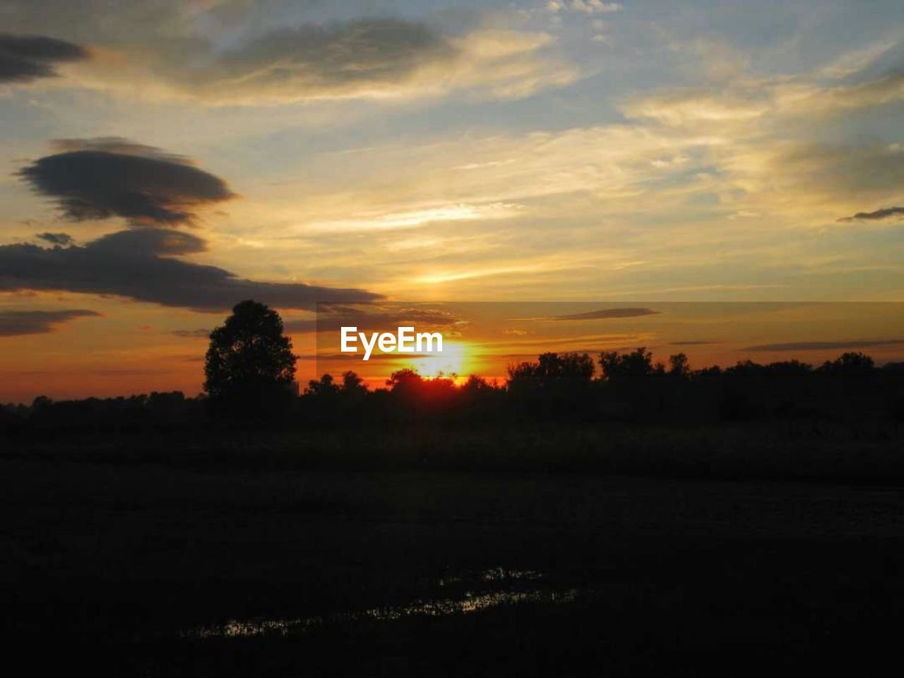 sky, sunset, tranquil scene, scenics - nature, tranquility, cloud - sky, beauty in nature, environment, landscape, tree, land, nature, field, no people, silhouette, plant, idyllic, orange color, non-urban scene, sun, outdoors