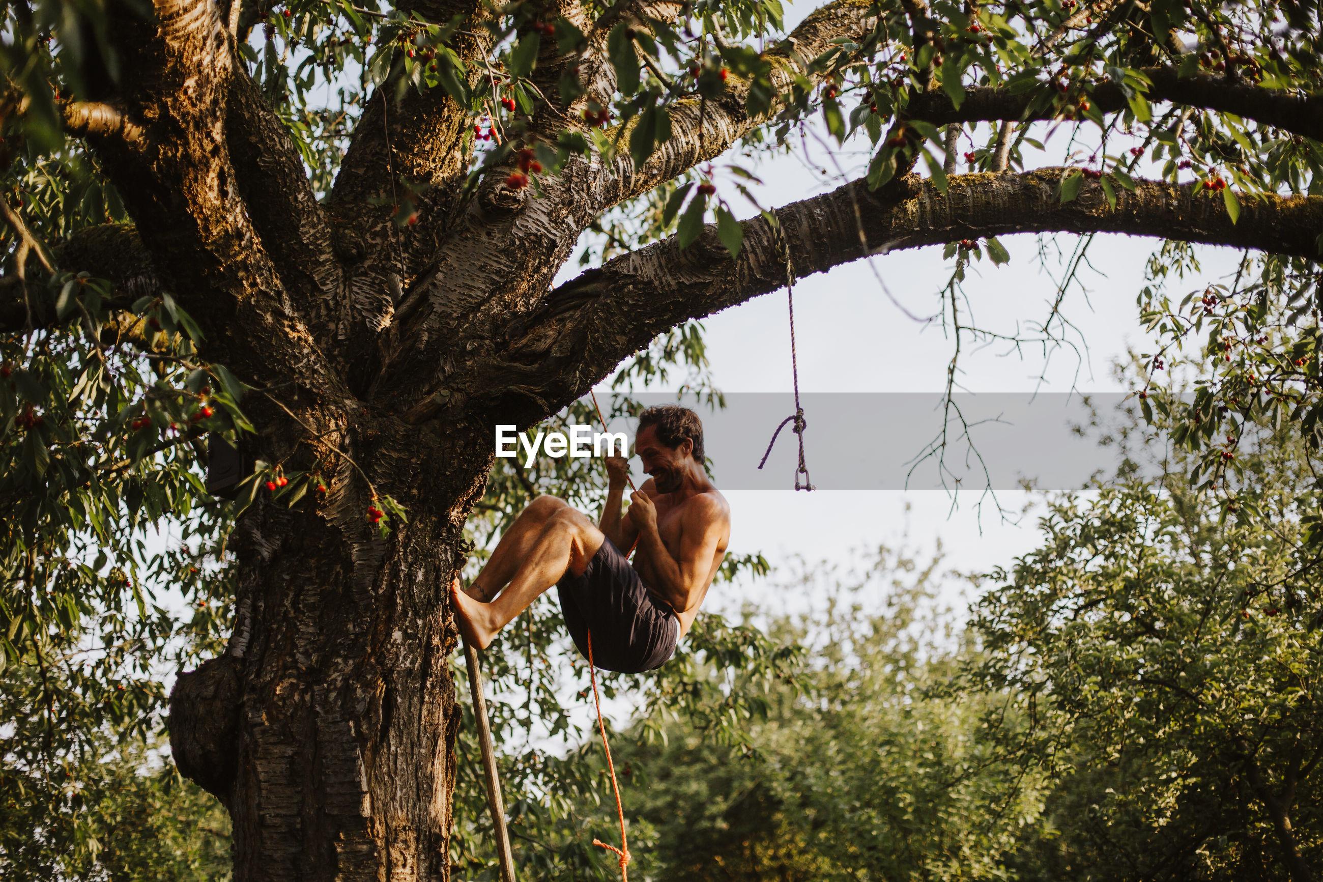Shirtless man climbing on tree